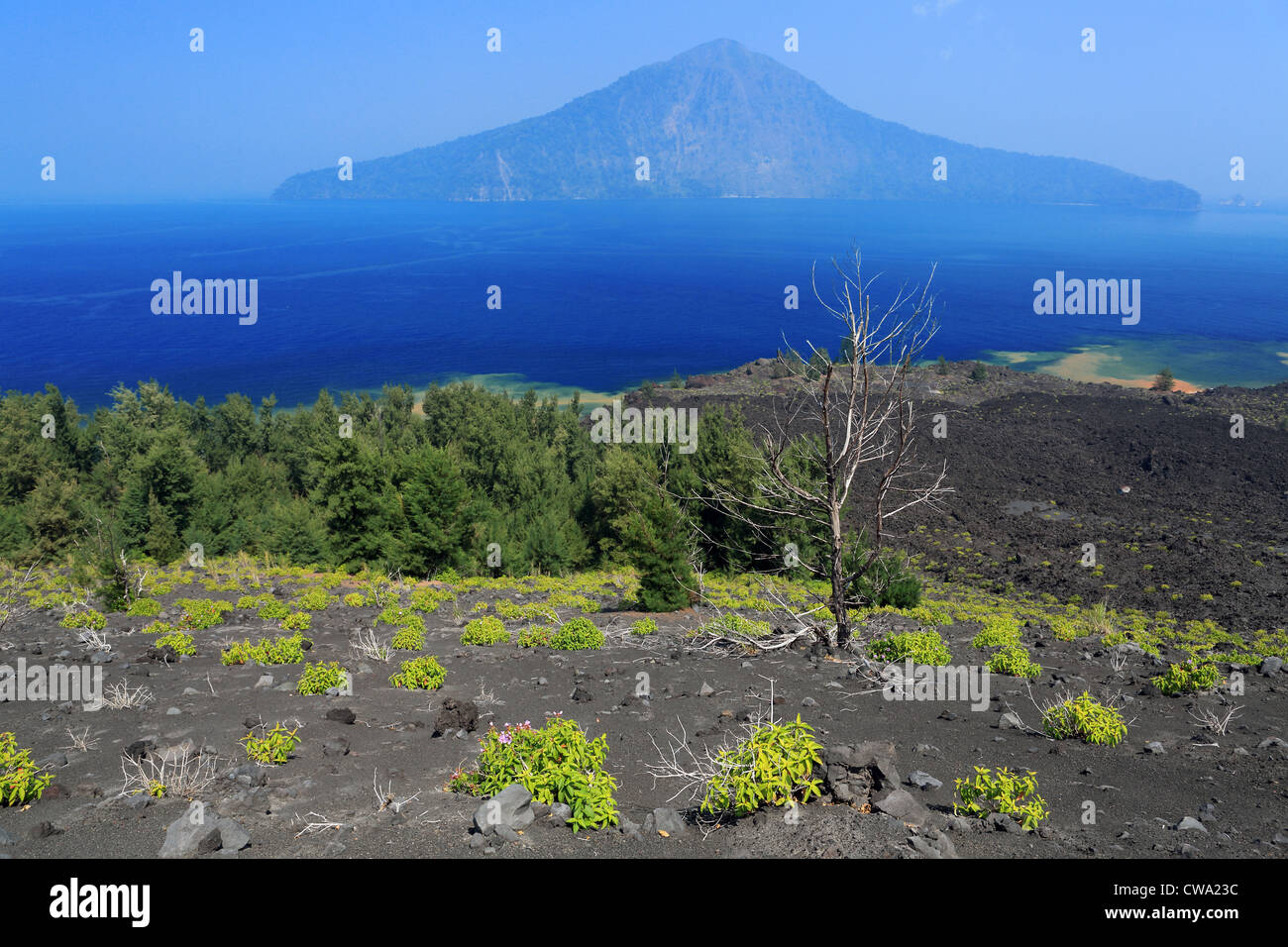 View from Krakatoa (Krakatau) volcano looking towards Rakata Island in the Sunda Strait. - Stock Image