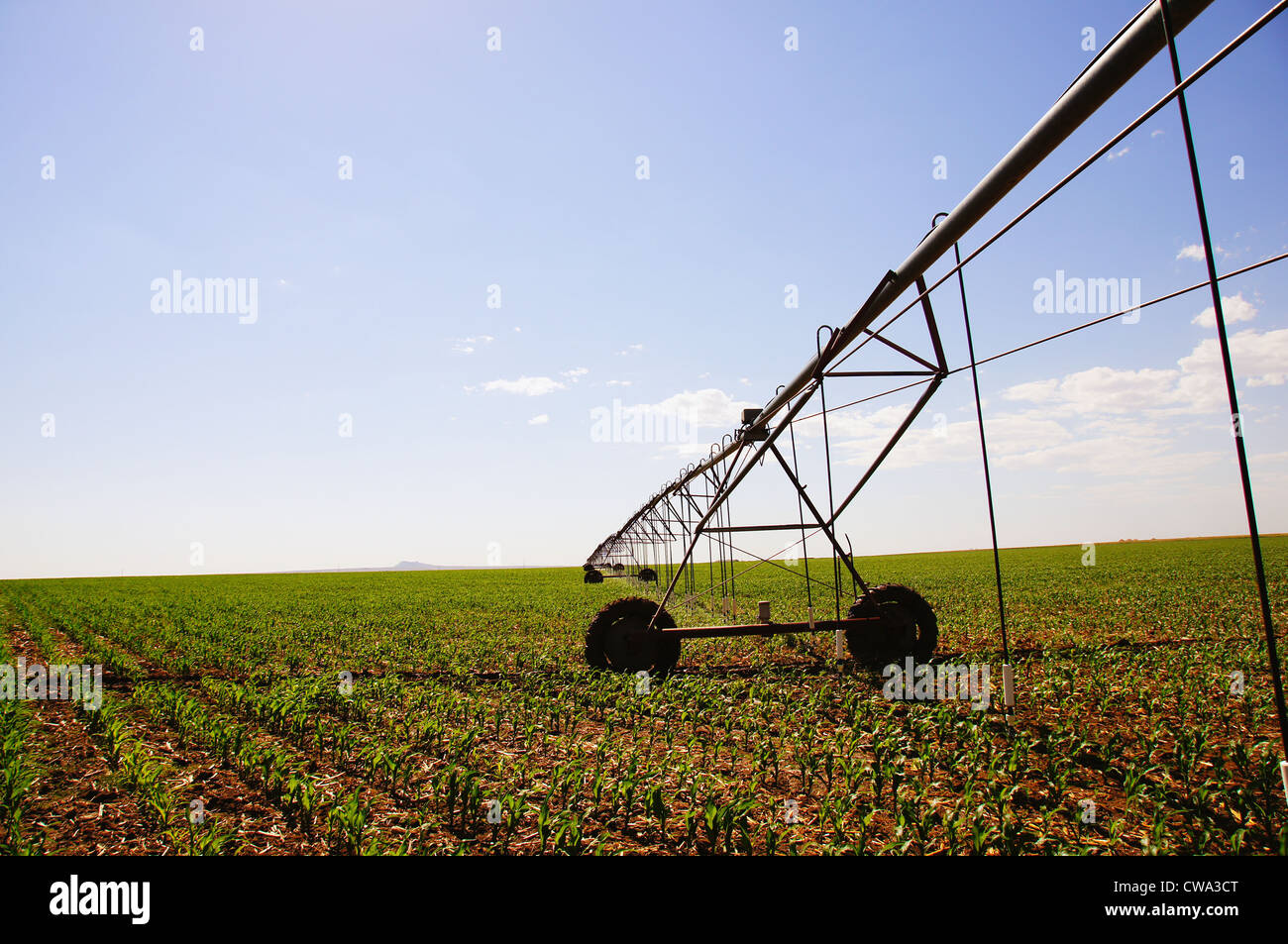 centerpivot irrigation called central pivot circle method crop in equipment rotates around crops watered - Stock Image