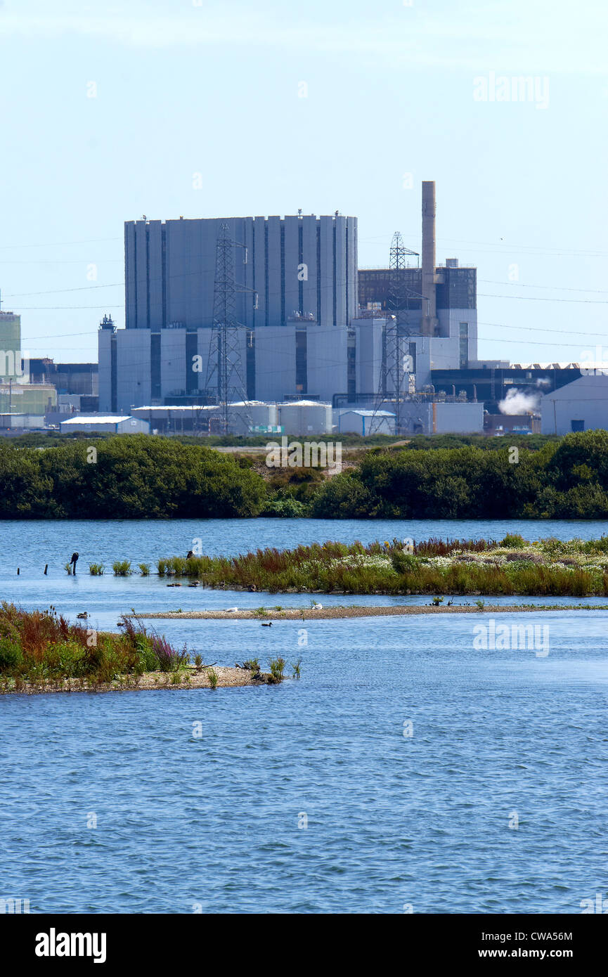 Dungeness nuclear power station and nature reserve - Stock Image