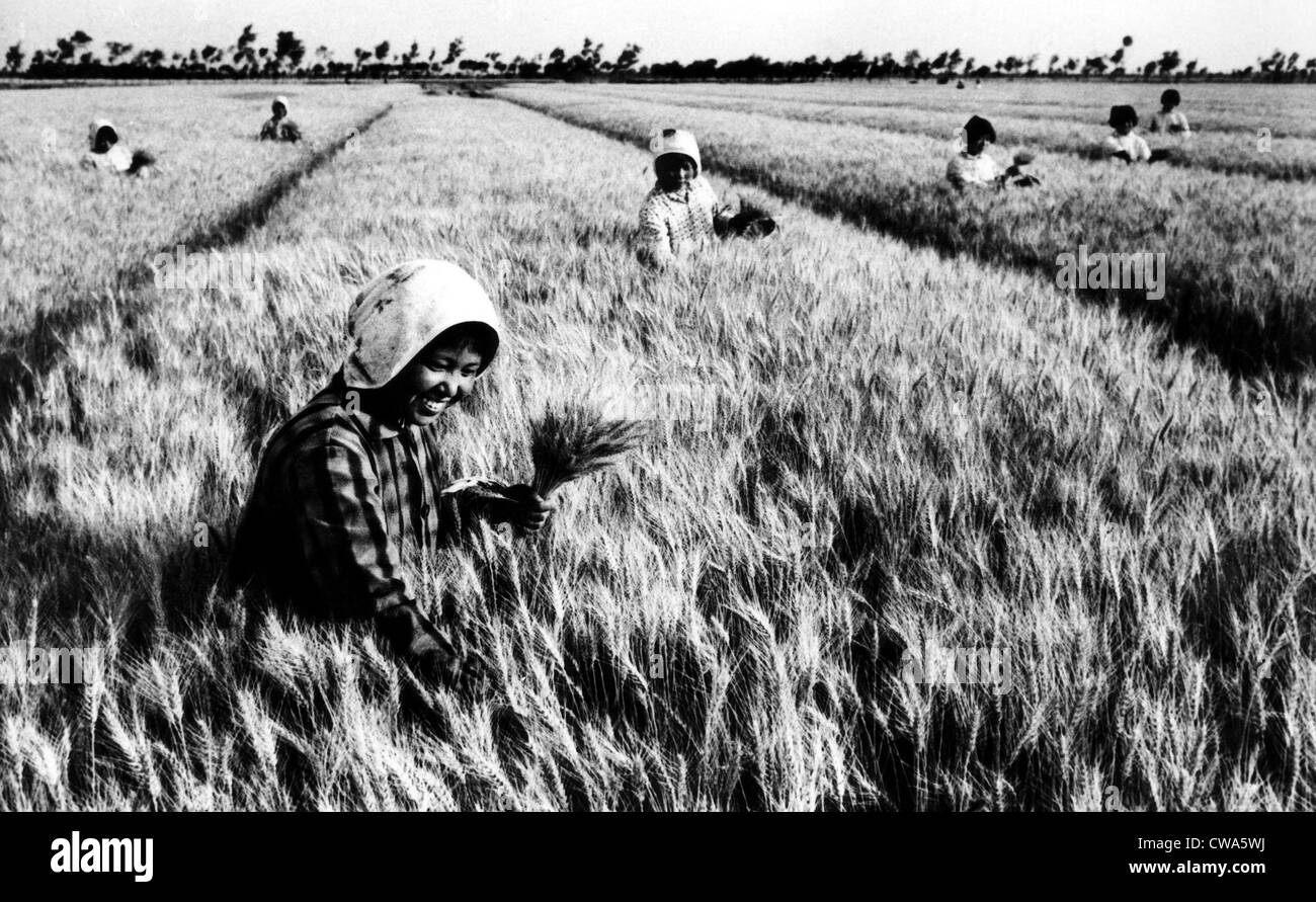 Members of the Changkuo People's Commune in China's Kiangsu Province harvest wheat, 1974. Courtesy: CSU - Stock Image