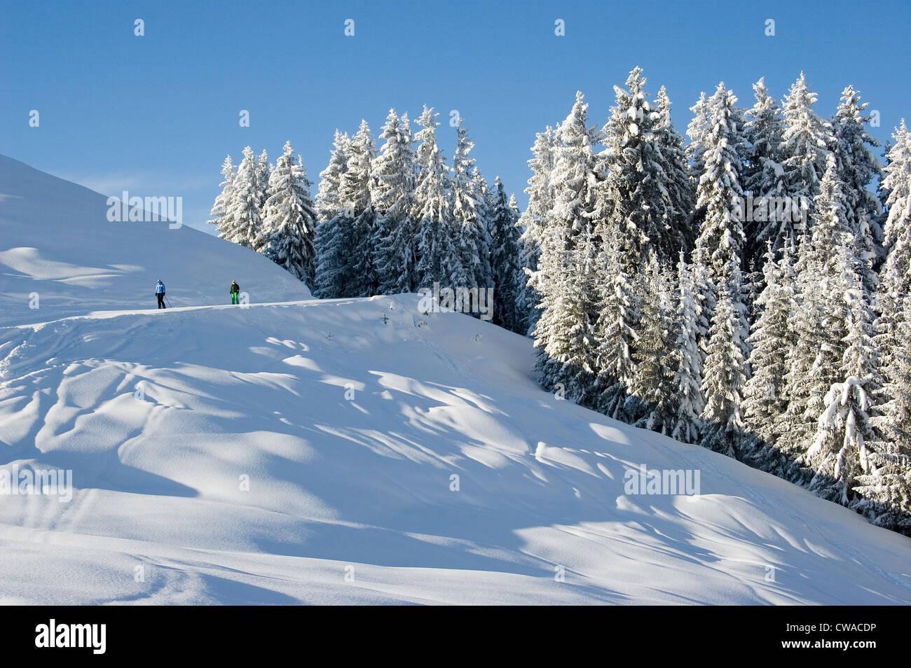 Niederau, skiers on a ski slope - Stock Image