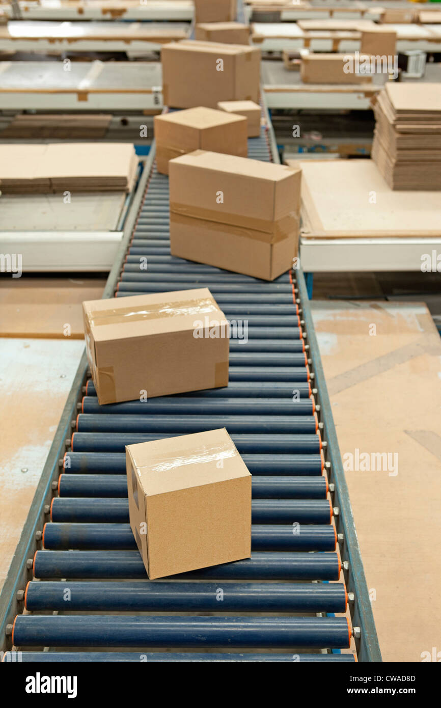 Cardboard boxes on conveyor belt - Stock Image