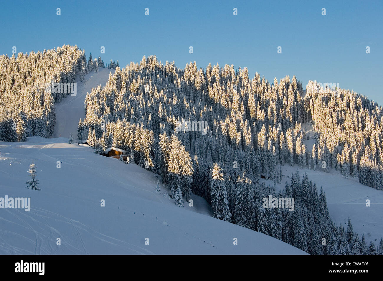 Niederau, look at a ski slope - Stock Image