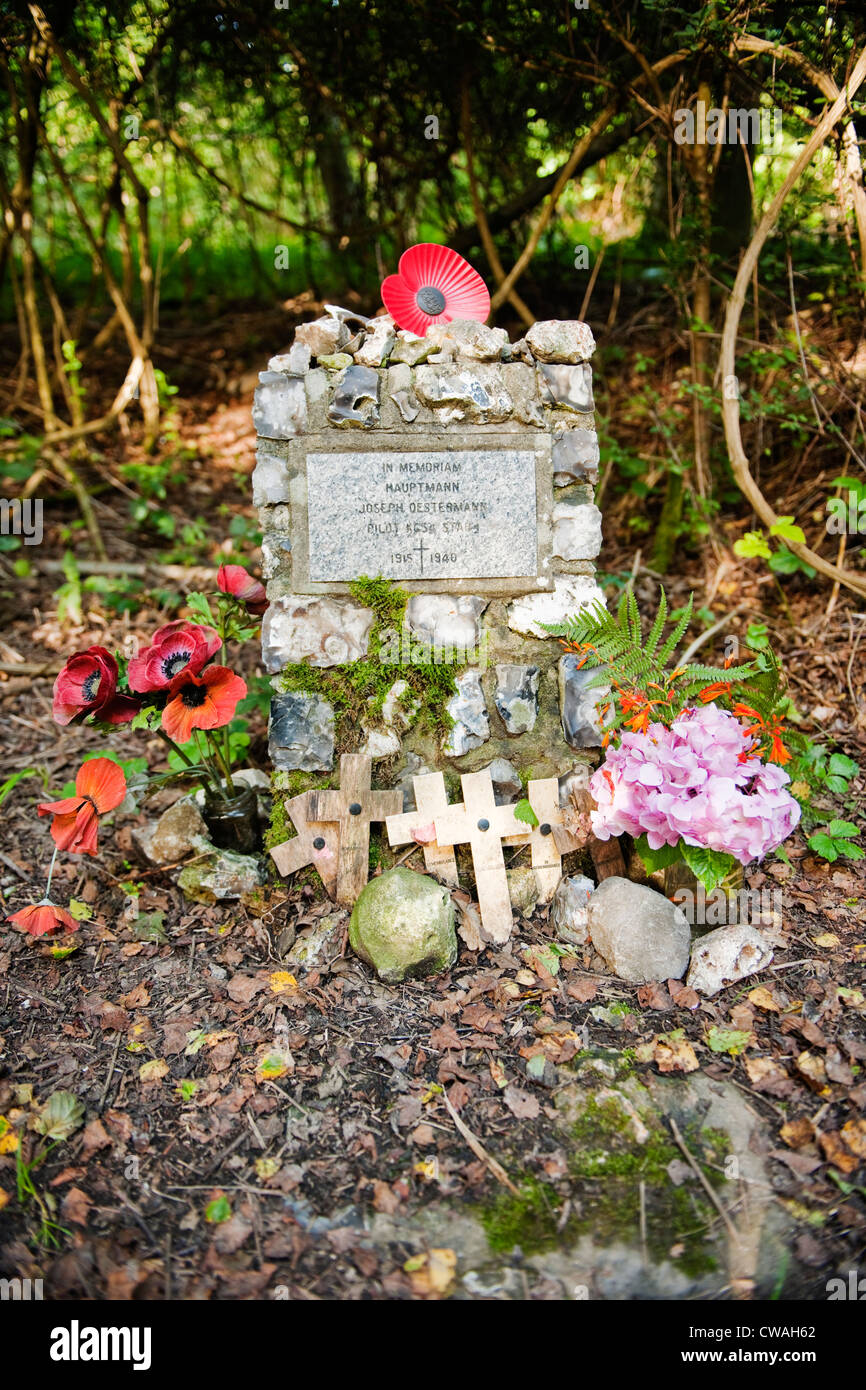 A memorial to Joseph Oestermann a young  Luftwaffe pilot shot down over the South Downs near Treyford in West Sussex, - Stock Image