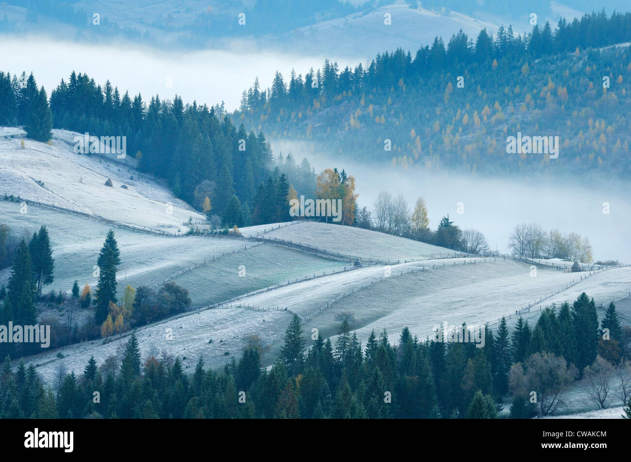 Misty morning, Krasnik village area, Carpathian Mountains, Ivano-Frankivsk region, Ukraine Stock Photo