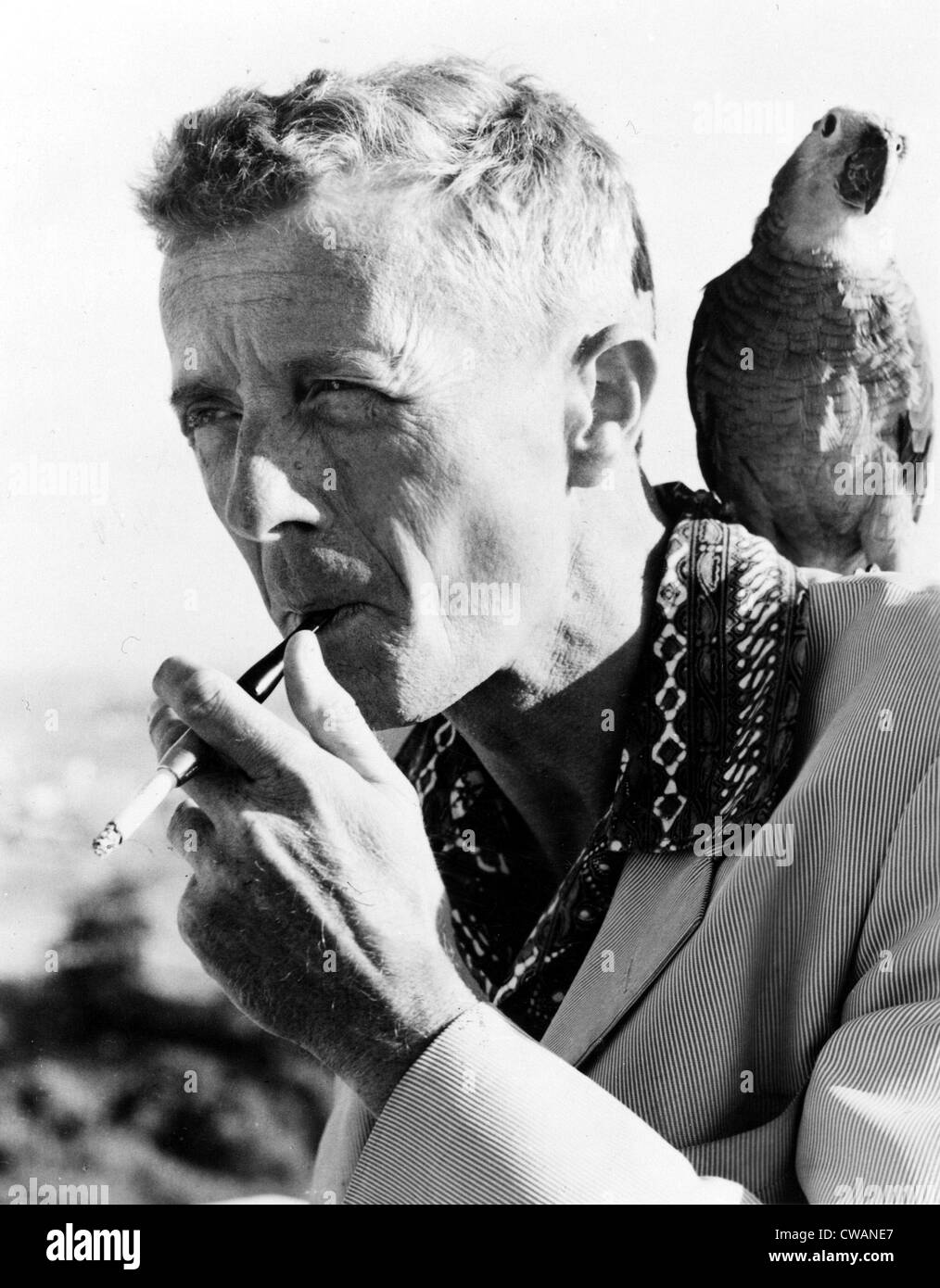 PAUL BOWLES, circa 1960s. Courtesy: CSU Archives / Everett Collection - Stock Image