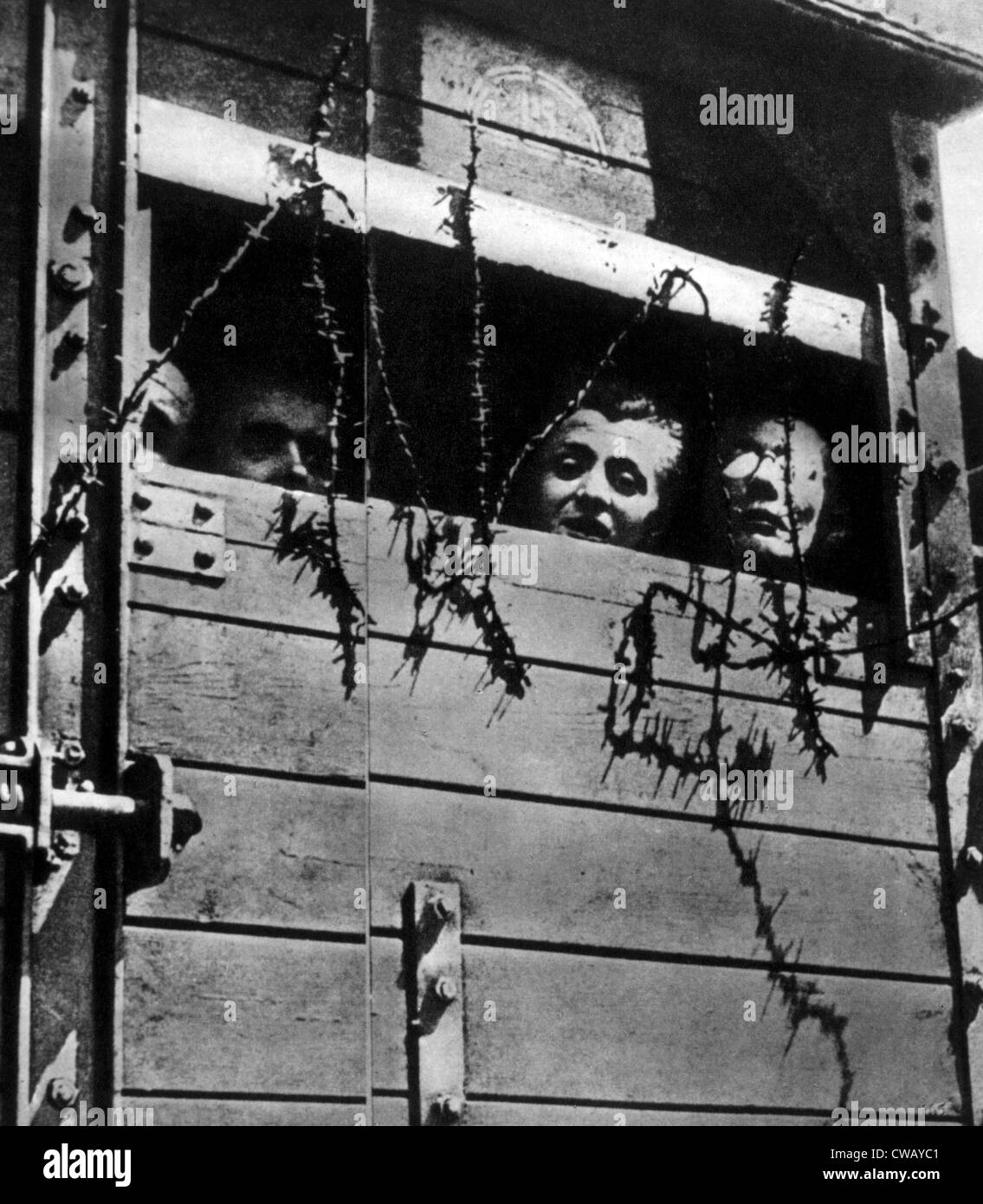 Transport to Auschwitz concentration camp, 1944. - Stock Image