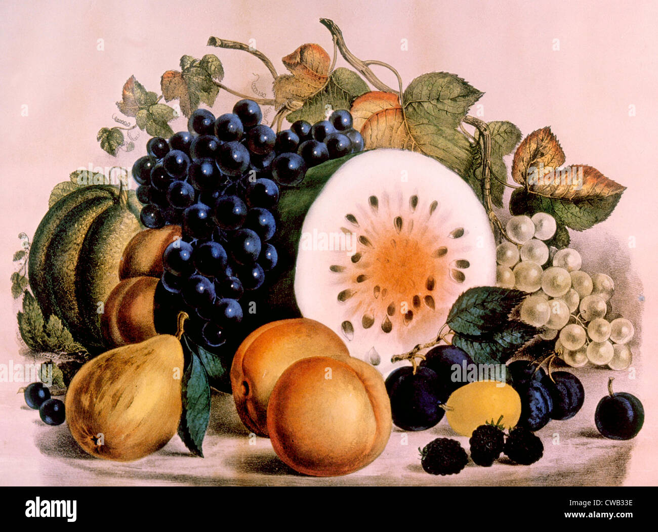 Autumn Fruits, lithograph by Currier & Ives, 1861 - Stock Image