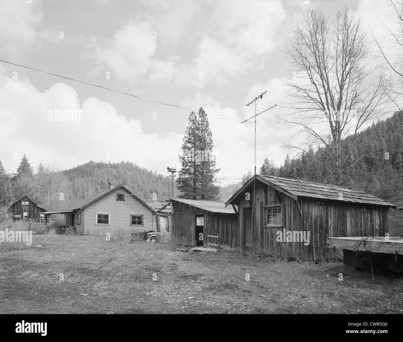 Taxidermy Shop, Liberty Historic District, Route 2, Cle Elum, Liberty, Kittitas County, Washington, photograph, - Stock Image