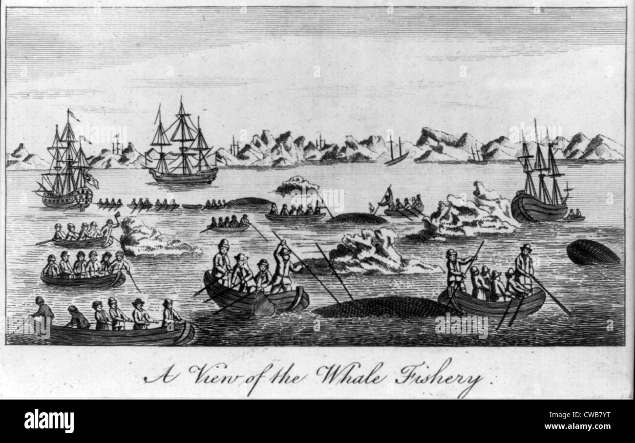 Whaling. A view of the whale fishery. Woodcut ca. 1830s-1850s - Stock Image