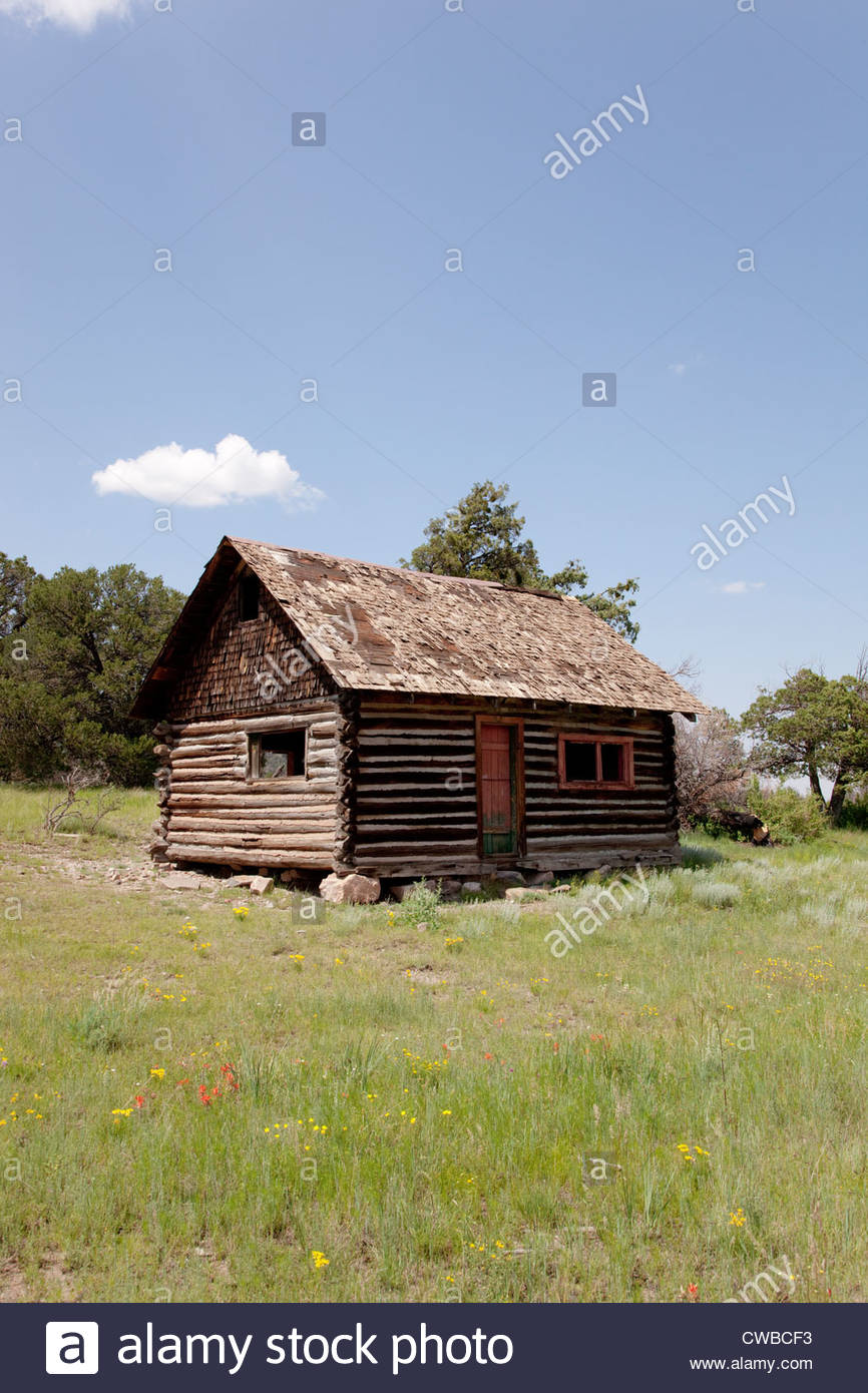 Old Log Cabin in Forest Arizona Stock Photo