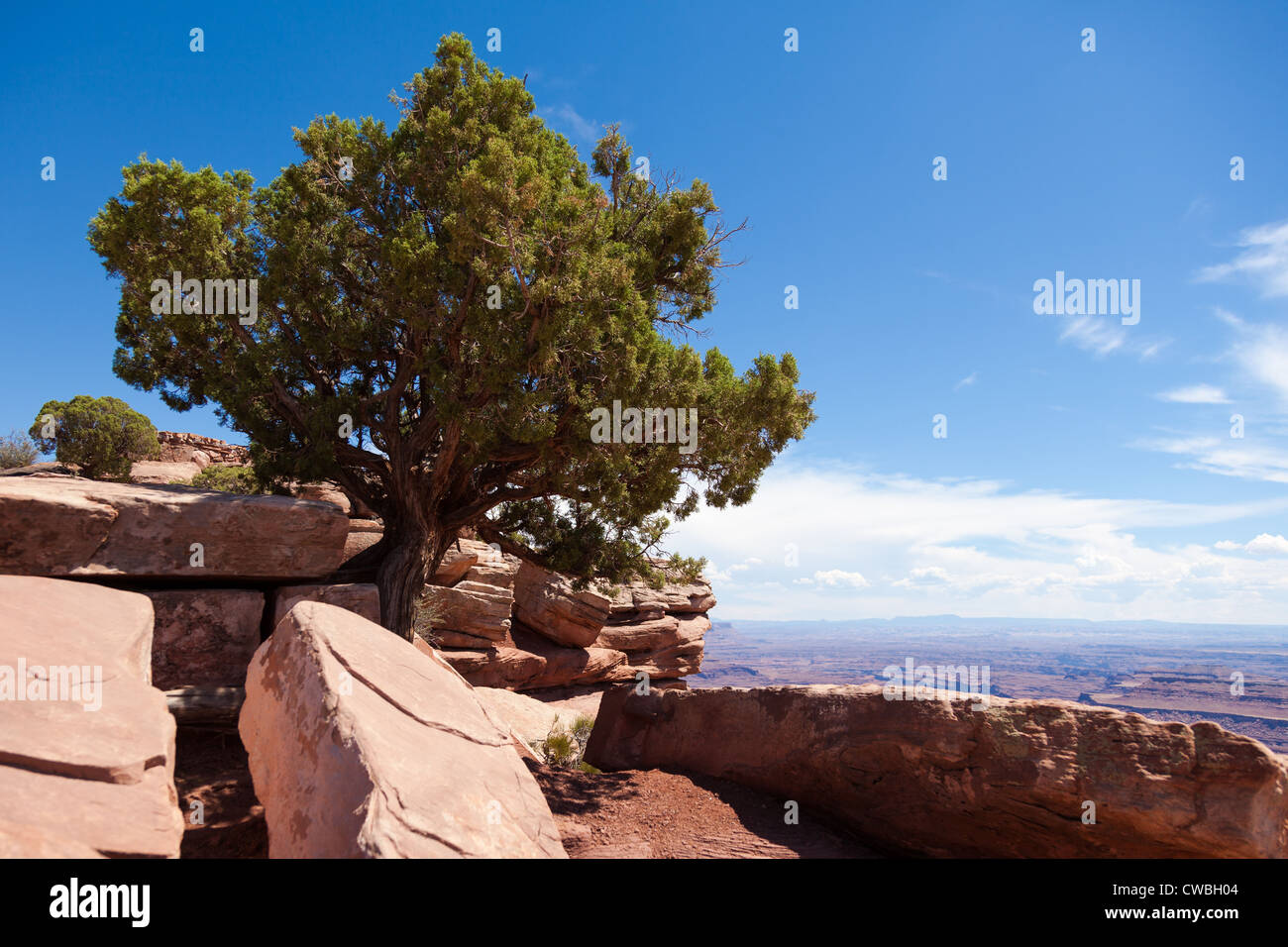 Dead horse view in Utah - USA - Stock Image