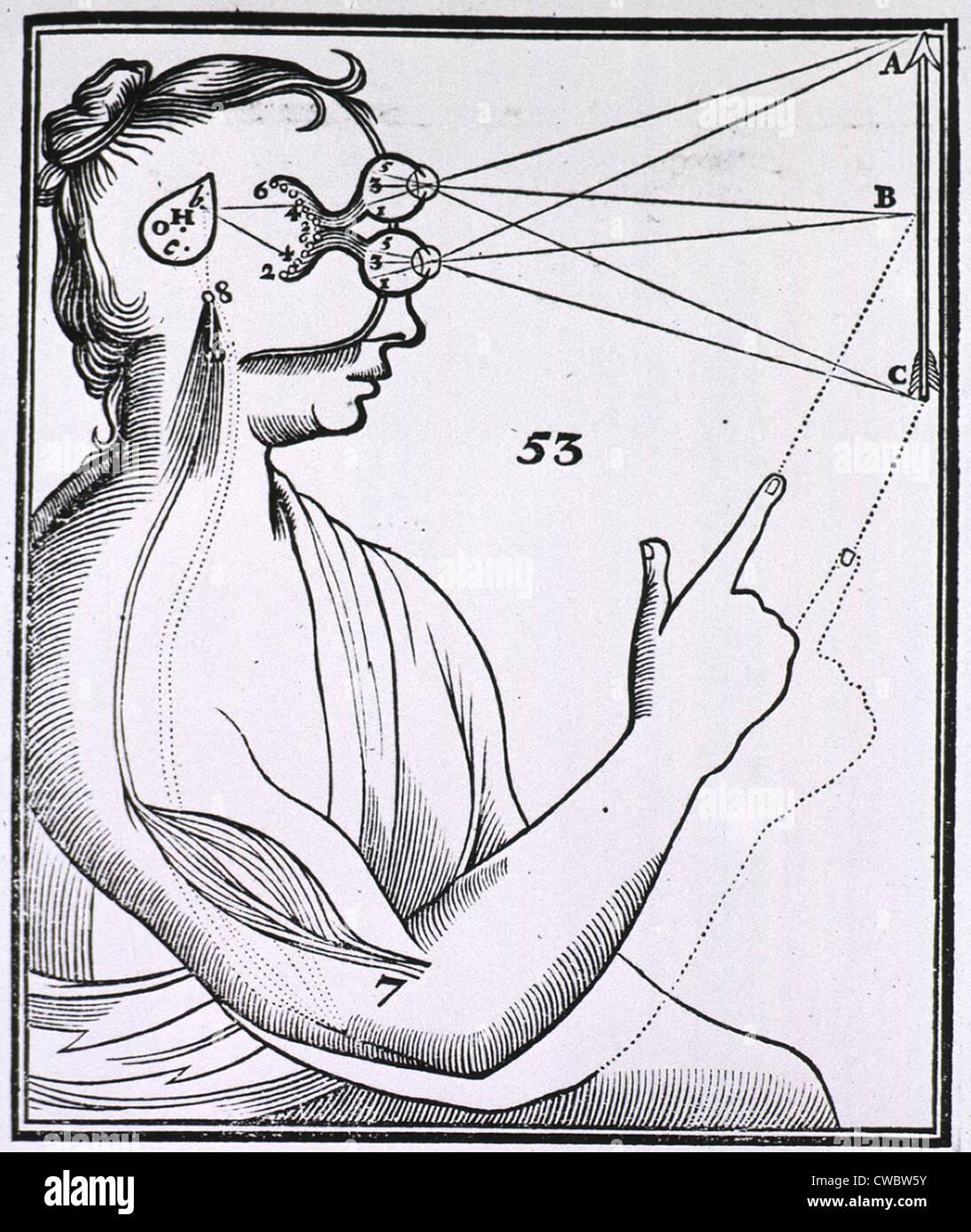 Descartess Theory of Action
