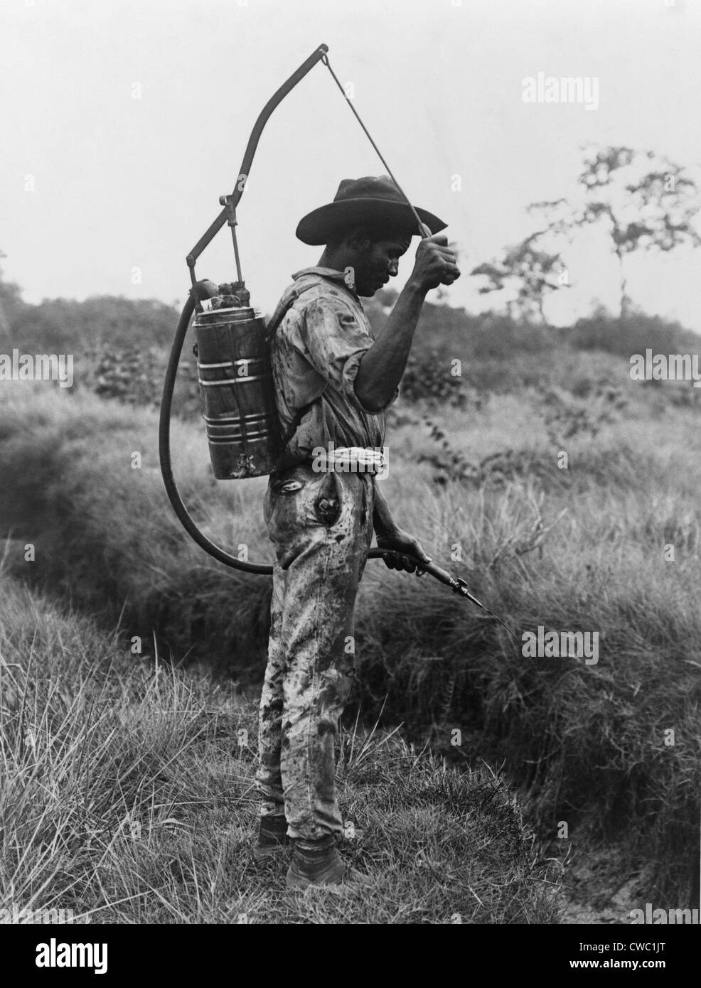 Panamanian man with a canister on his back spraying oil on breeding places of mosquitoes in Panama. Mosquito control - Stock Image