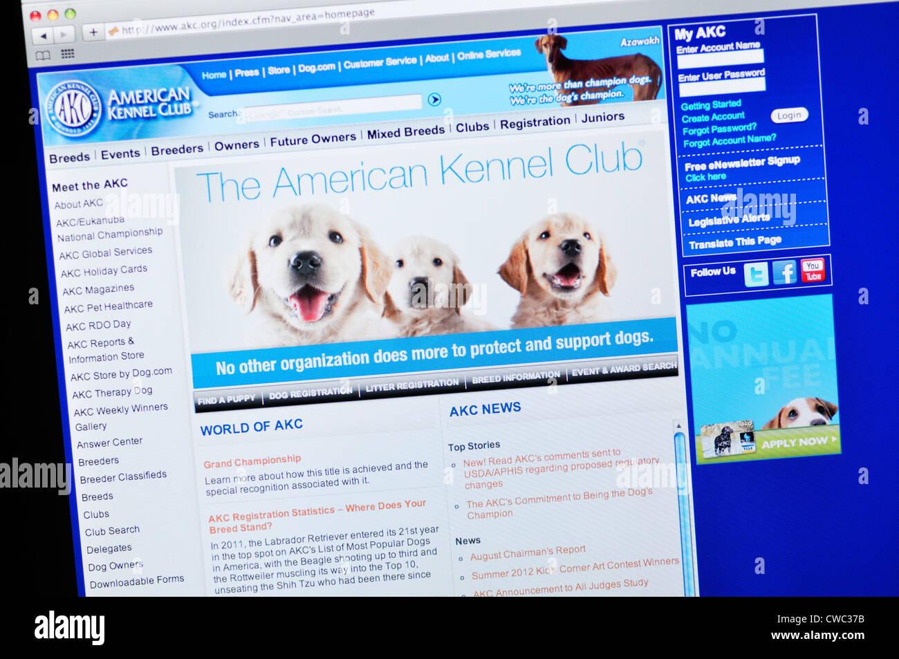 Akc Stock Photos & Akc Stock Images - Alamy
