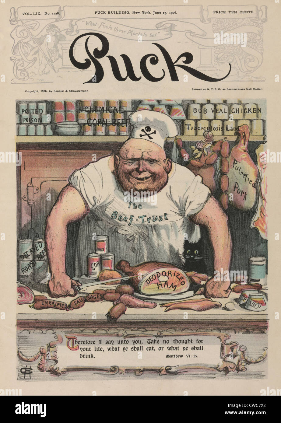 the meat market a 1906 cartoon by carl hassmann shows a butcher with