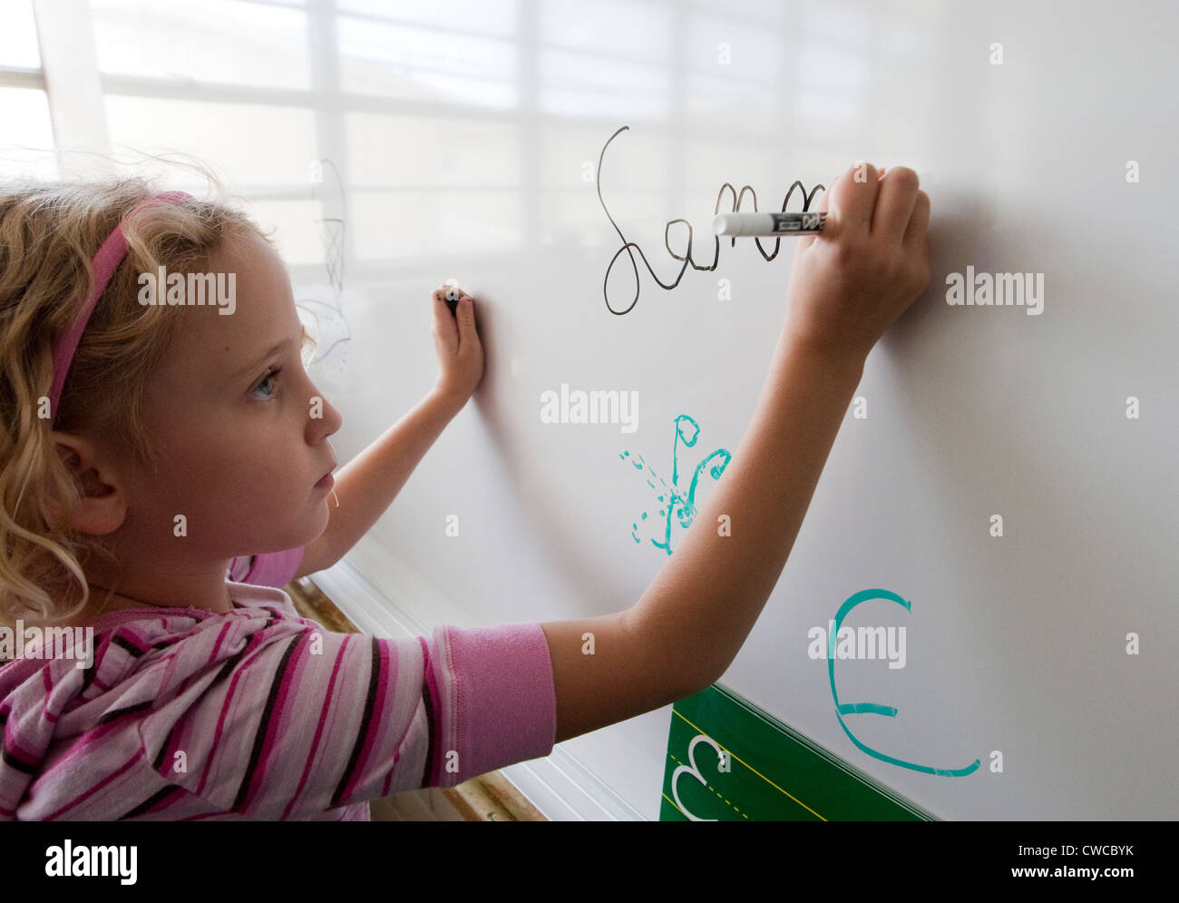 7 year old girl practices writing her name in cursive on white board - Stock Image