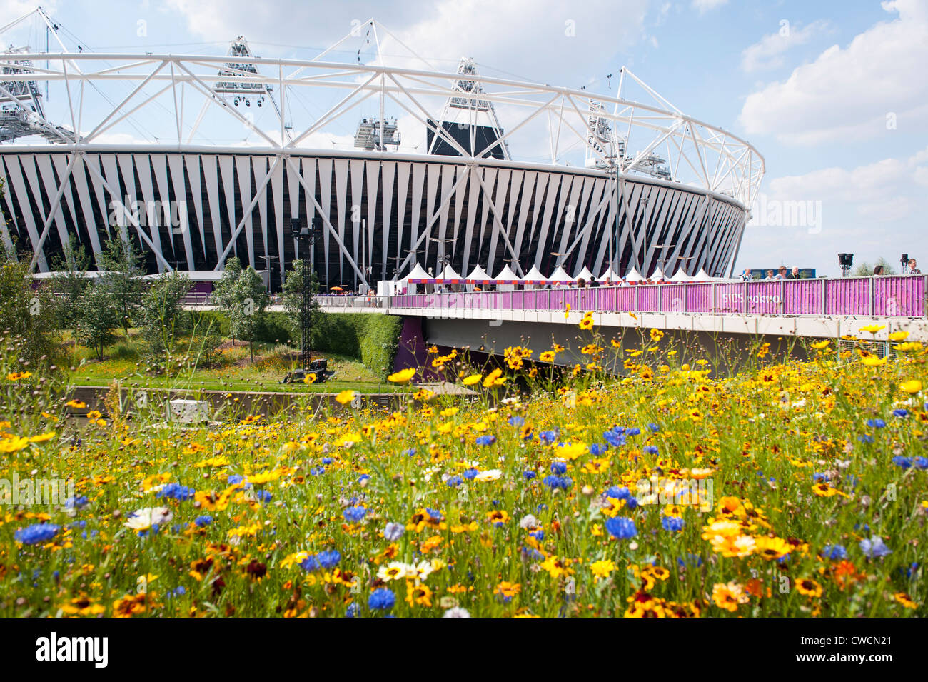 UK London 2012 Stratford Olympic Park Stadium wild English countryside flowers flower bridge over City Mill River - Stock Image