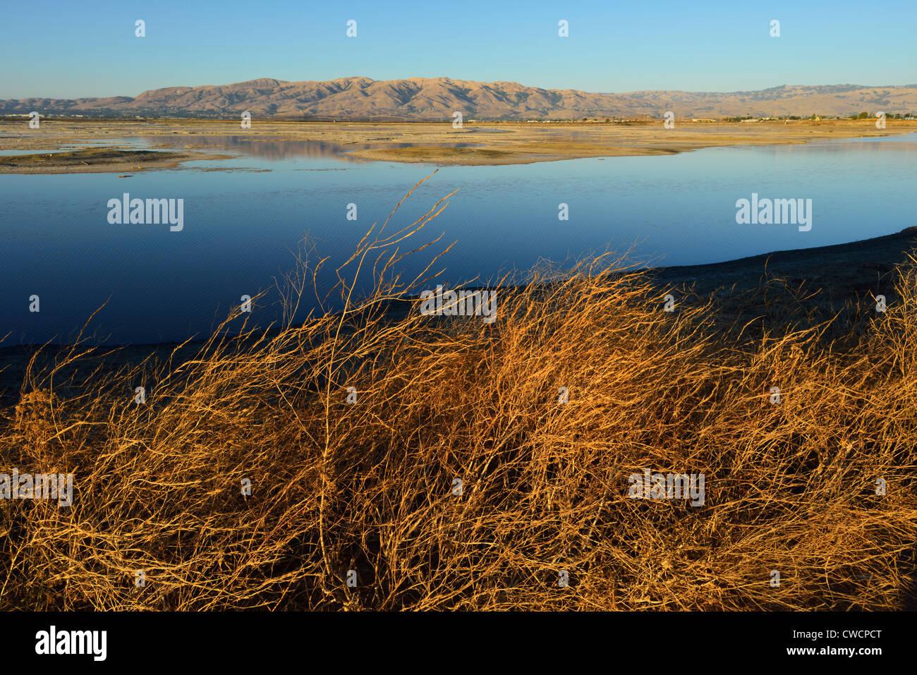 Alviso Marina County Park, San Jose CA - Stock Image