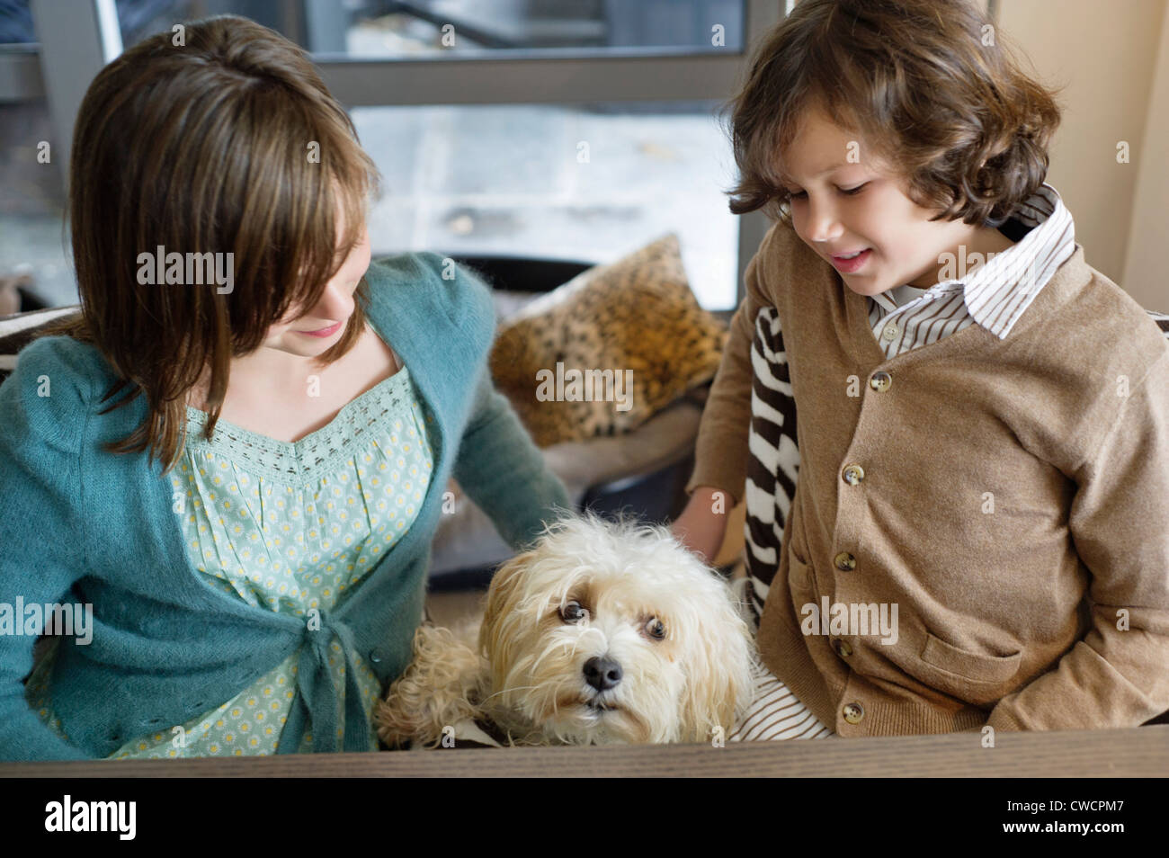 Boy and his sister playing with a dog - Stock Image