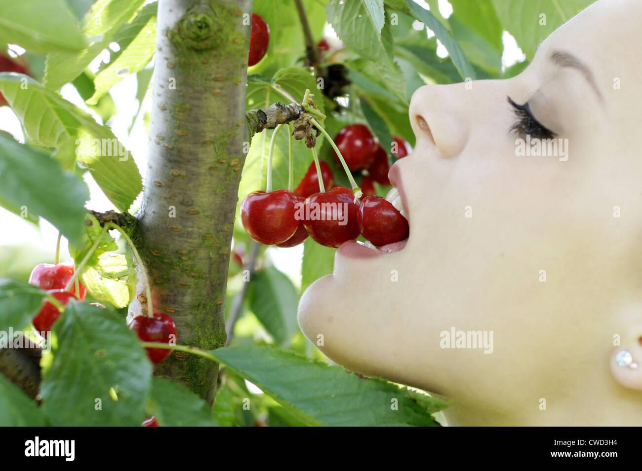 woman,indulgence,consumption,eating,cherries,harvest - Stock Image