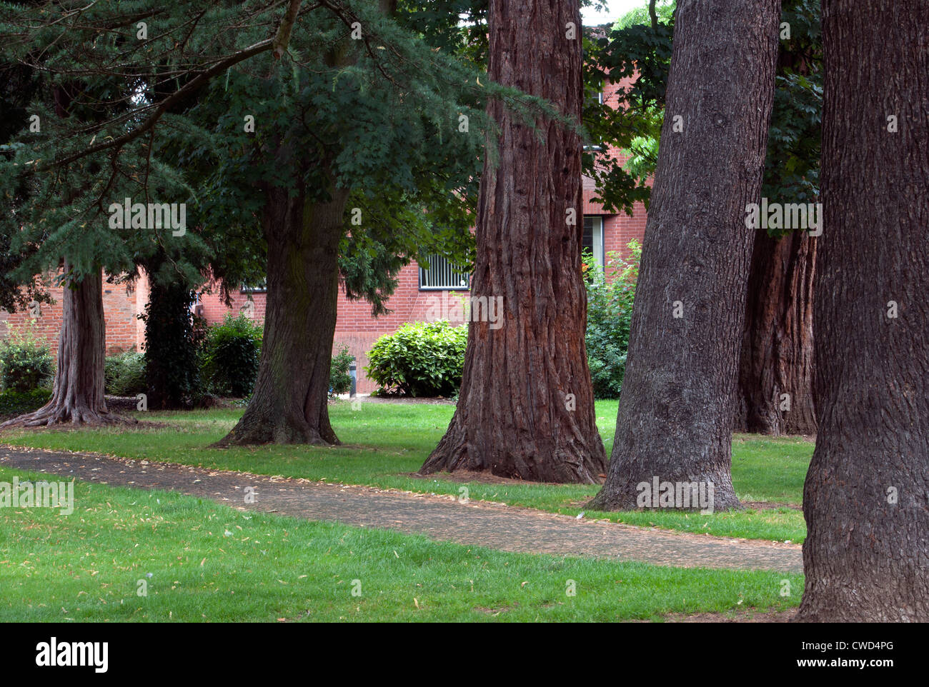 The Firs Gardens, Stratford-upon-Avon, UK - Stock Image