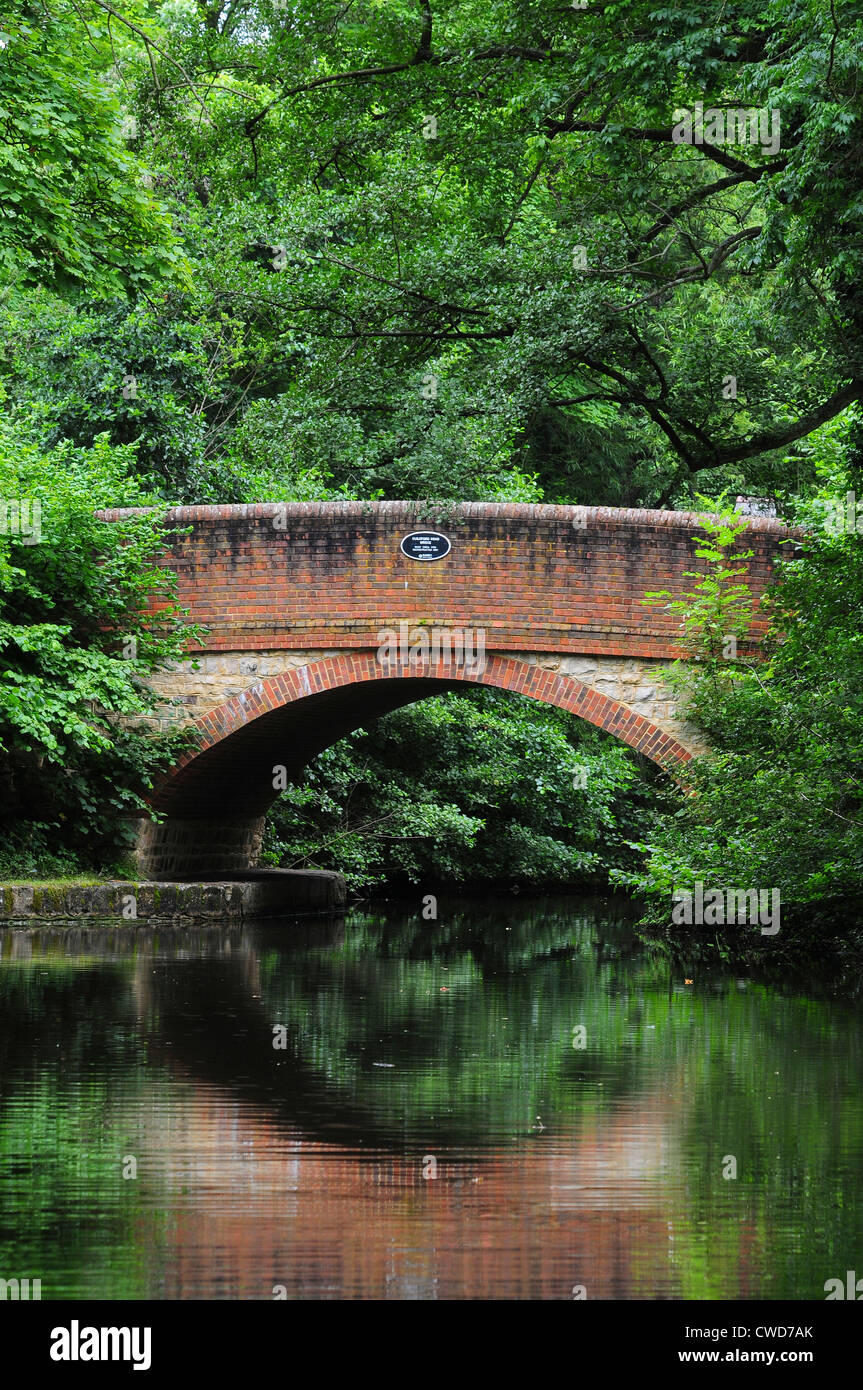 A bridge over the Basingstoke canal waterway UK - Stock Image