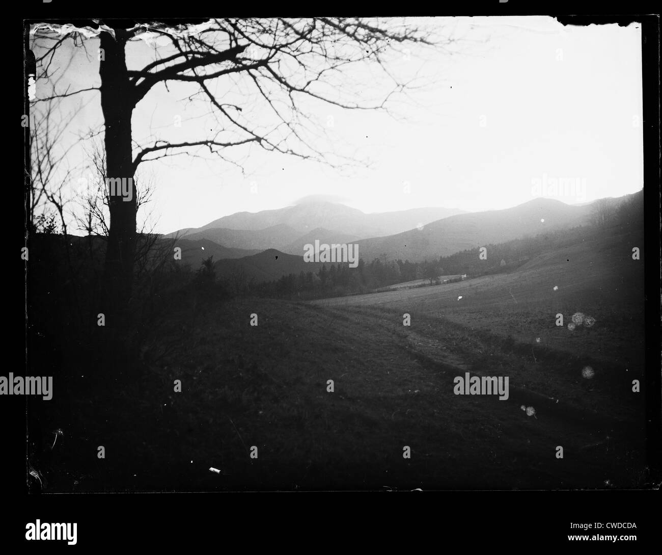 backlighting,meadow,mountains,historical photo - Stock Image