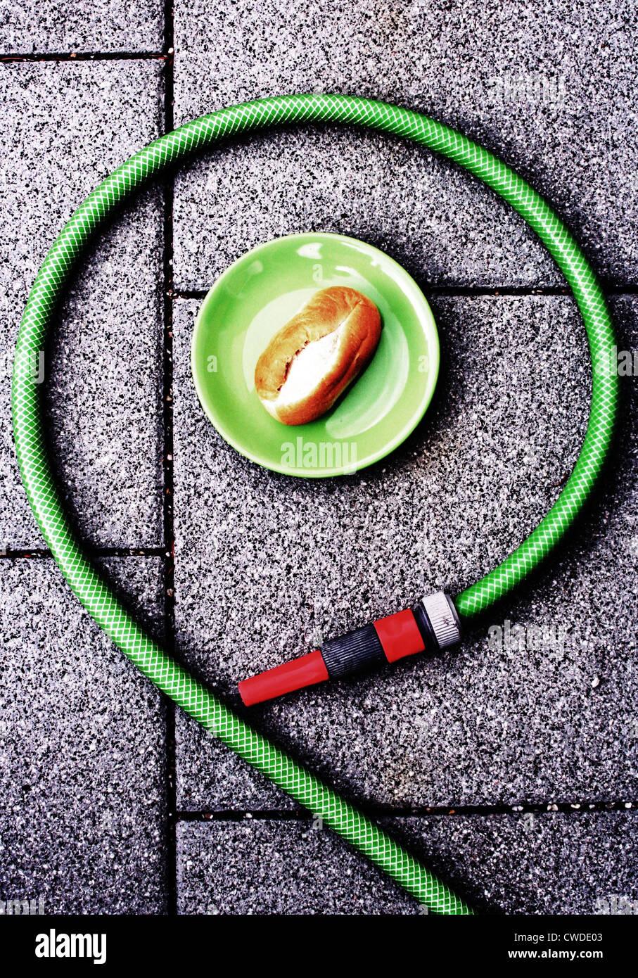 plate,bun,garden hose - Stock Image