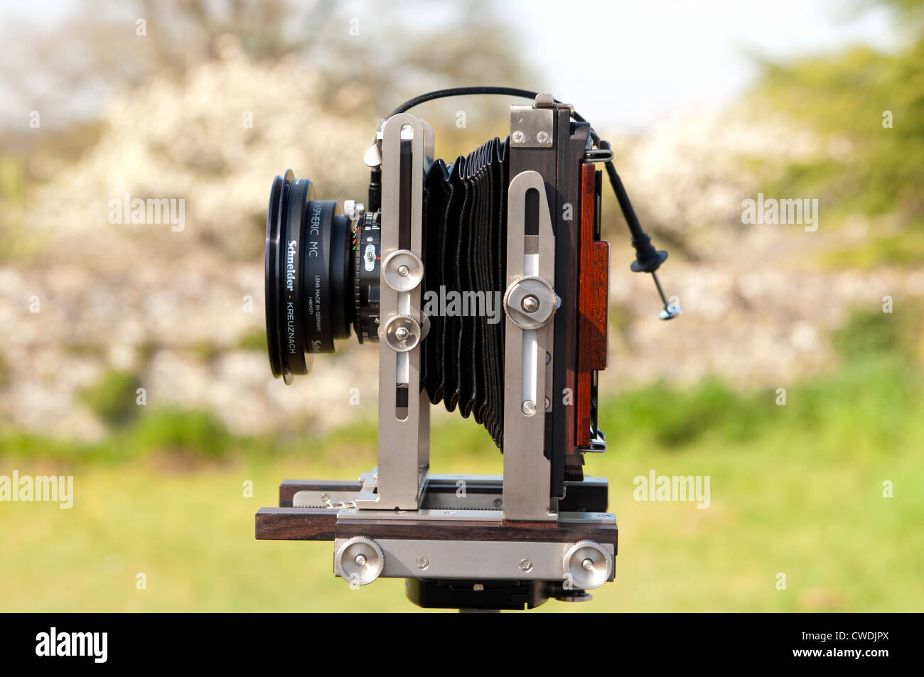 Side view of a modern Large Format Ebony SW45S view camera with cable release - Stock Image