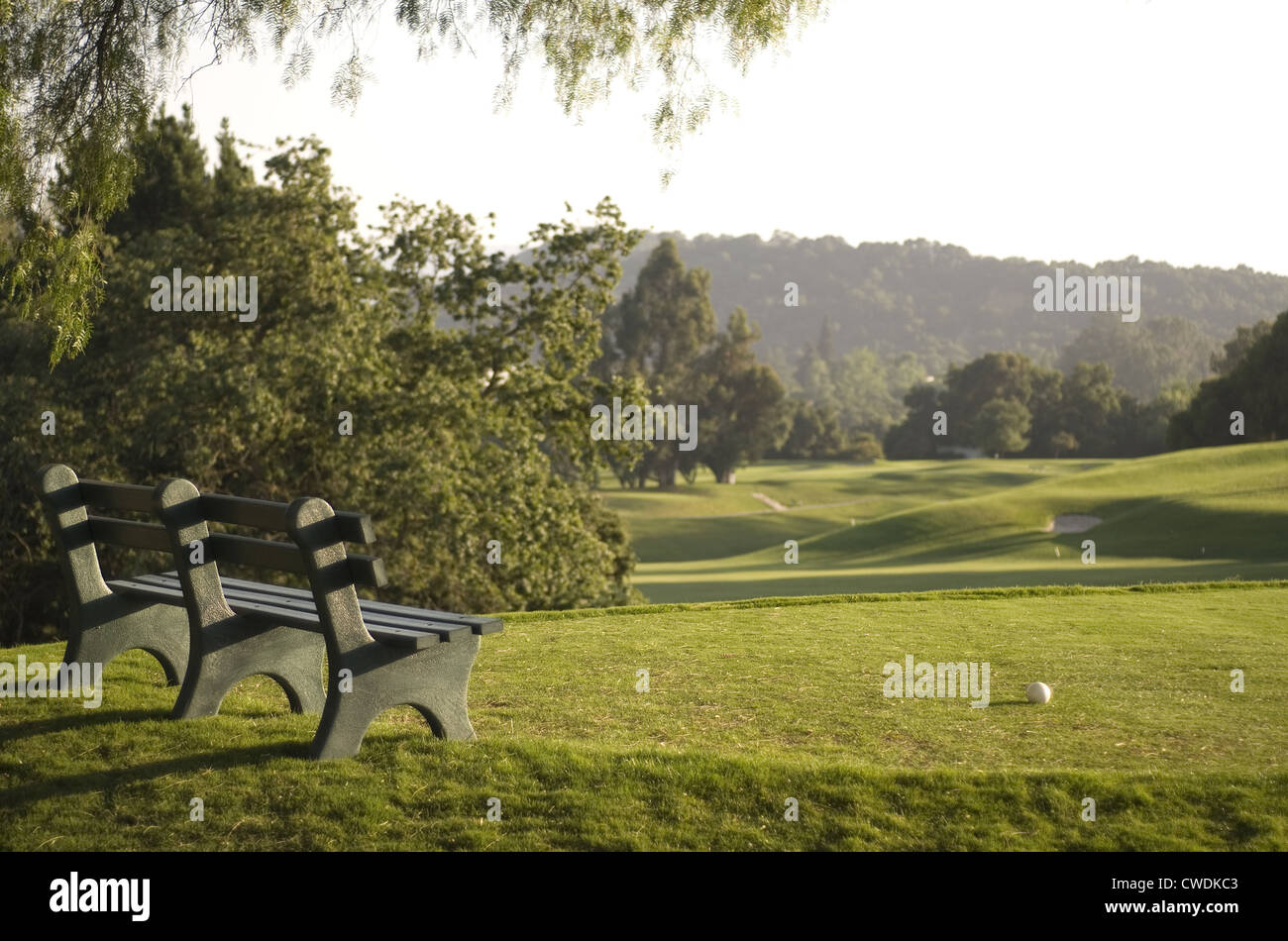 Golf Tee & Bench Stock Photo