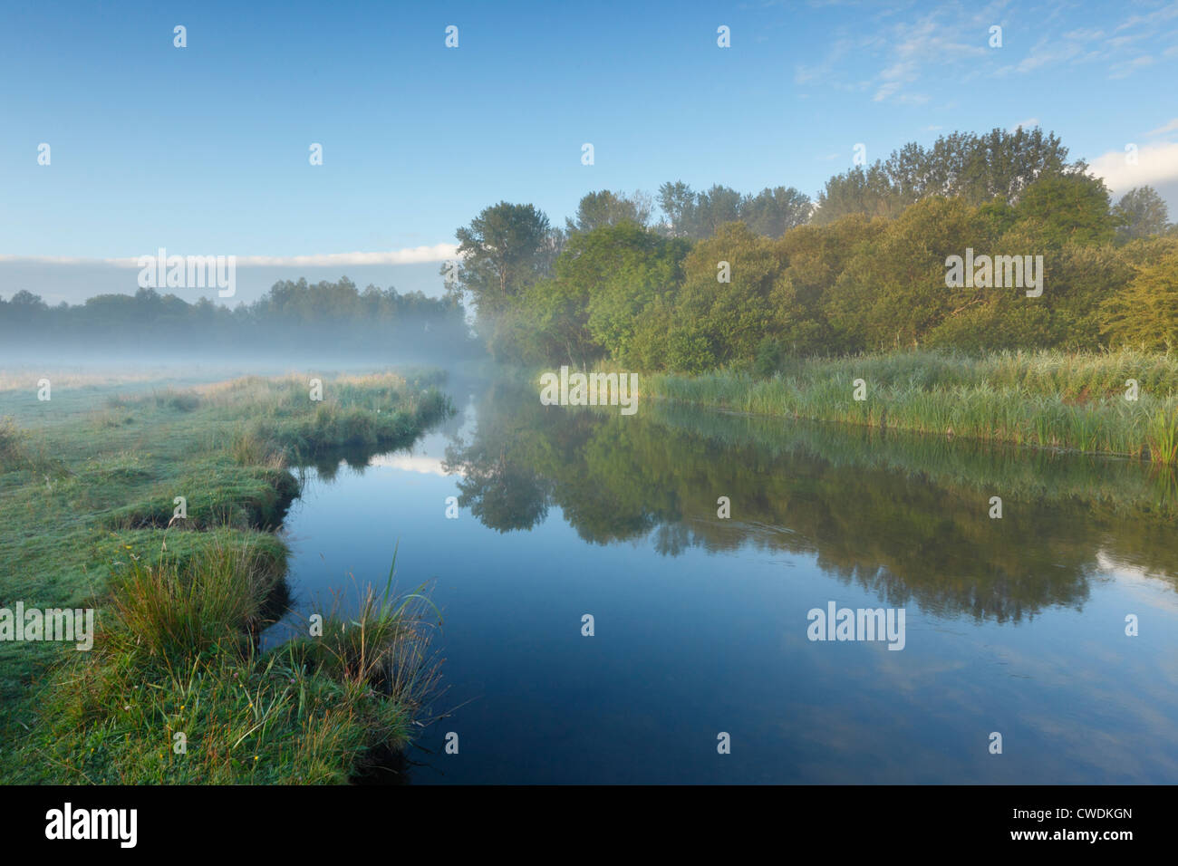The Marshcourt River (Tributary of the River Test) and Common Marsh (National Trust) near Stockbridge. Hampshire. - Stock Image