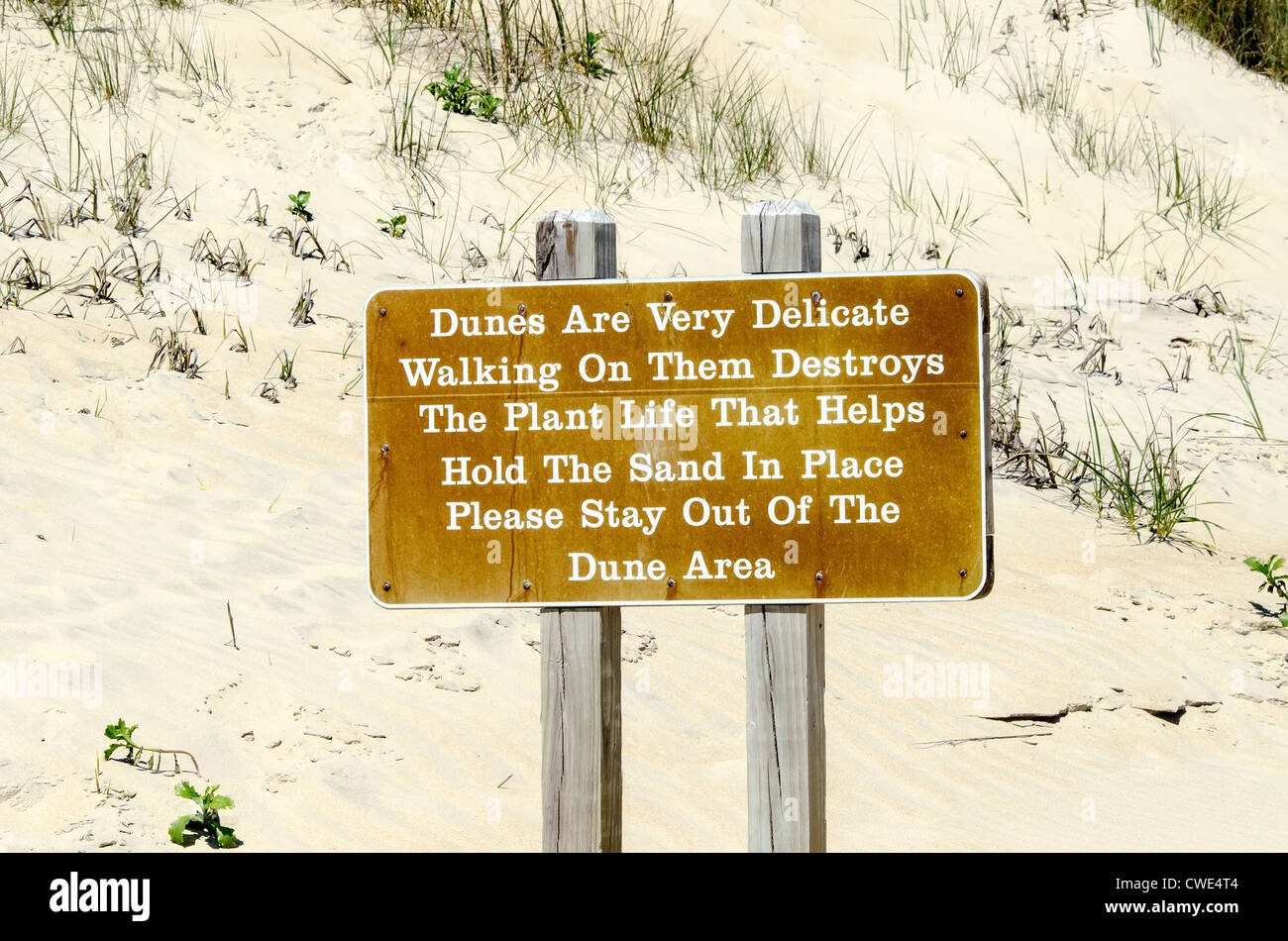 Sand dune warning sign 'stay away stay out' Currituck County, Outer Banks, North Carolina - Stock Image