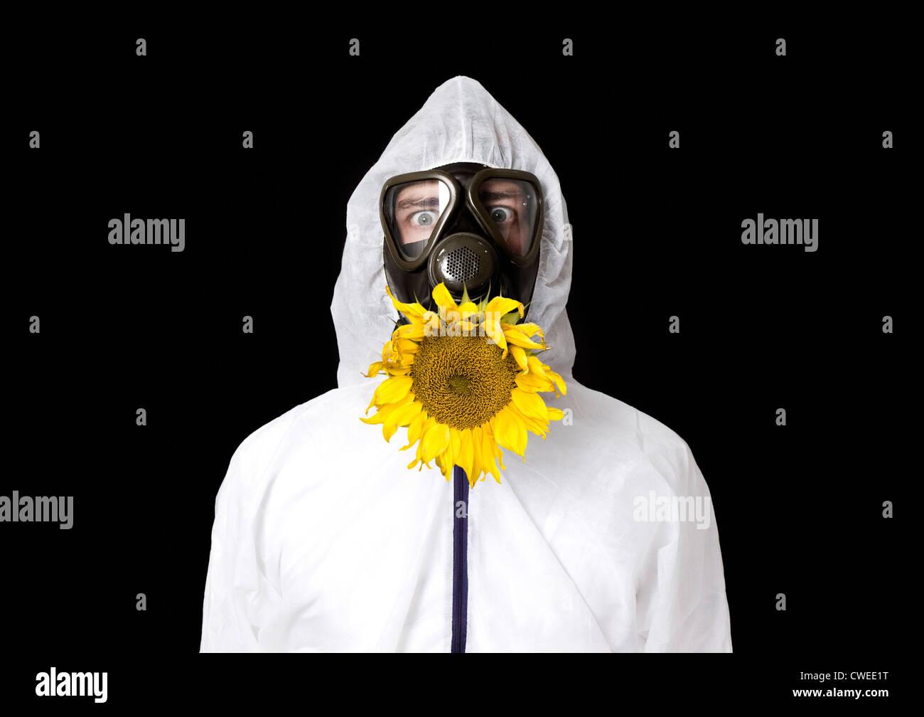 sunflower,gas mask - Stock Image