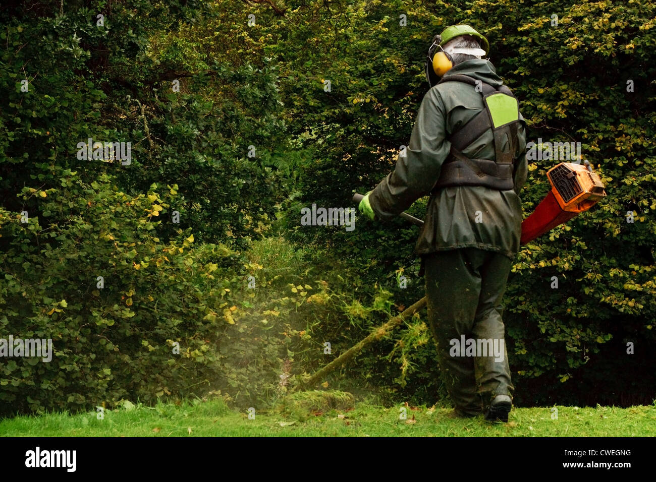 An agricultural worker trimming the brush with a petrol strimmer - Stock Image