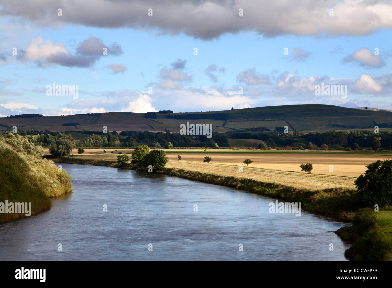 Evening Sunlight of Fields by the River Tweed from Henderson Park Coldstream Scottish Borders Scotland - Stock Image