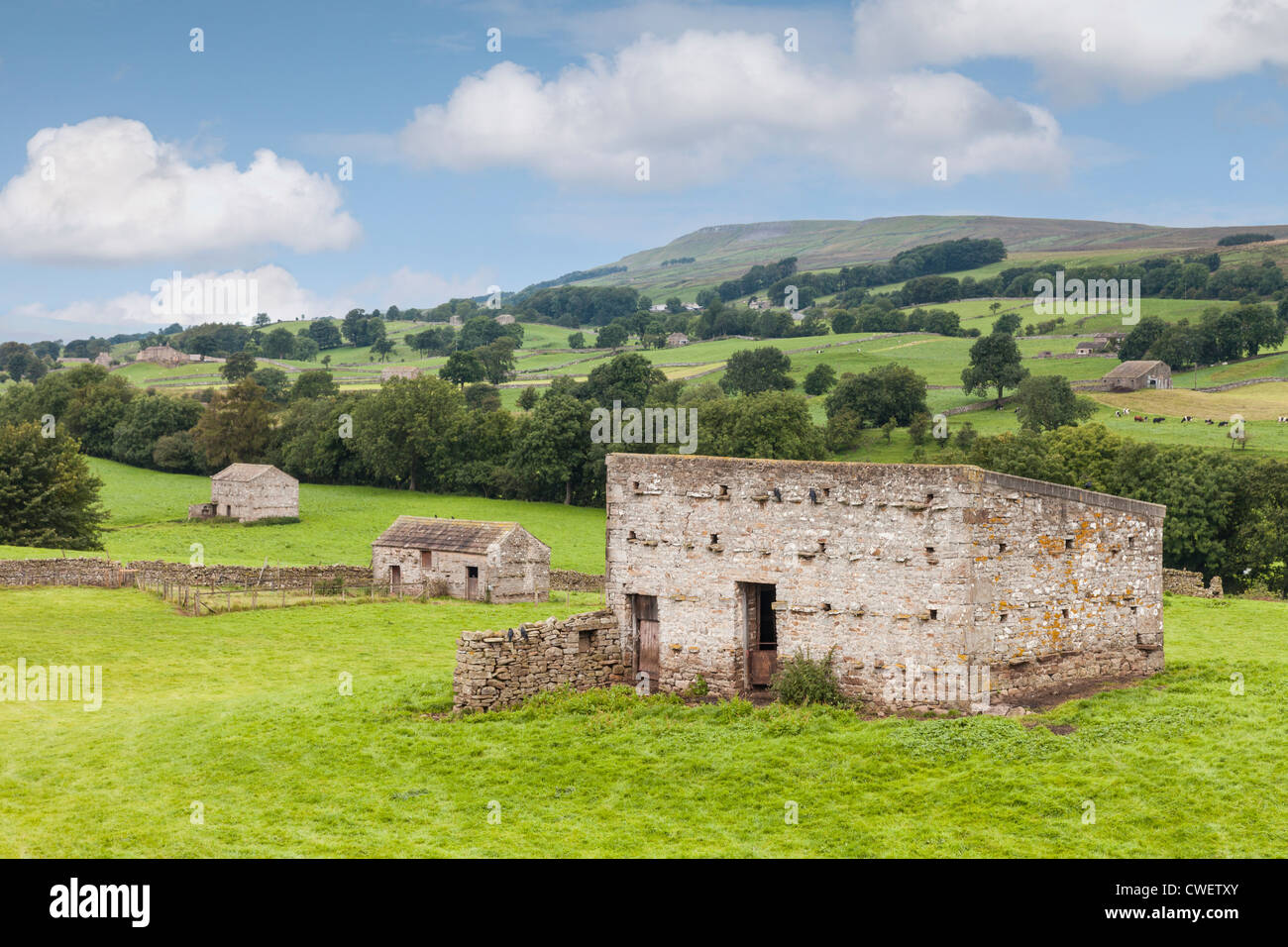 A typical stone barn in Wensleydale, Yorkshire Dales, England. - Stock Image