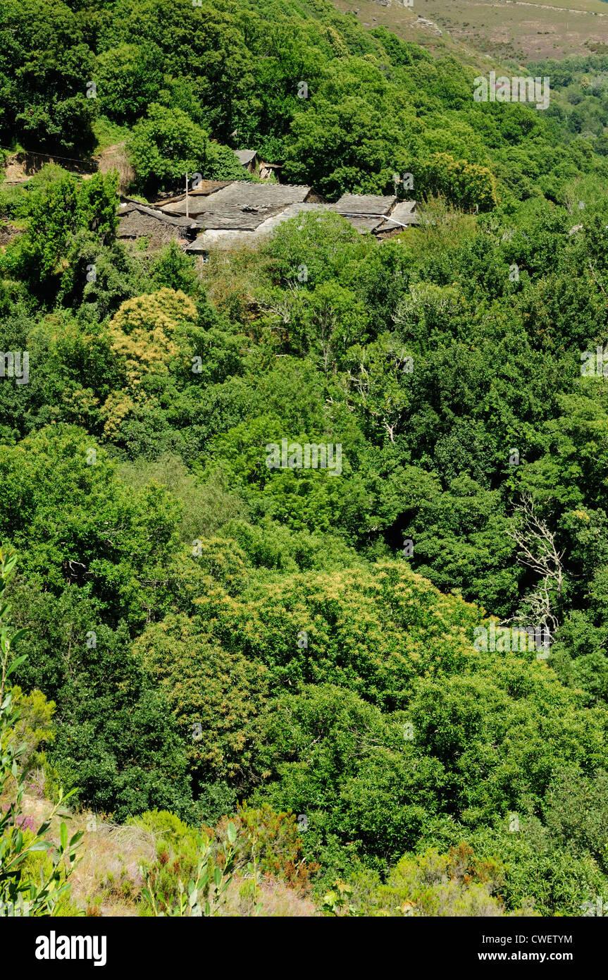 Village And Landscape In Gundriz Samos Lugo Stock Photo Alamy