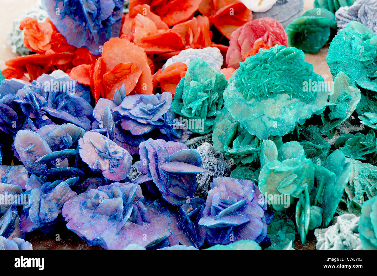 Close up view of colorful desert roses of the Sahara desert - Stock Image