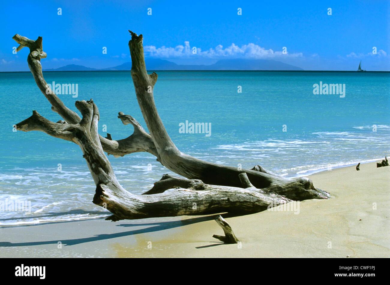 Darkwood beach Antigua Caribbean Stock Photo