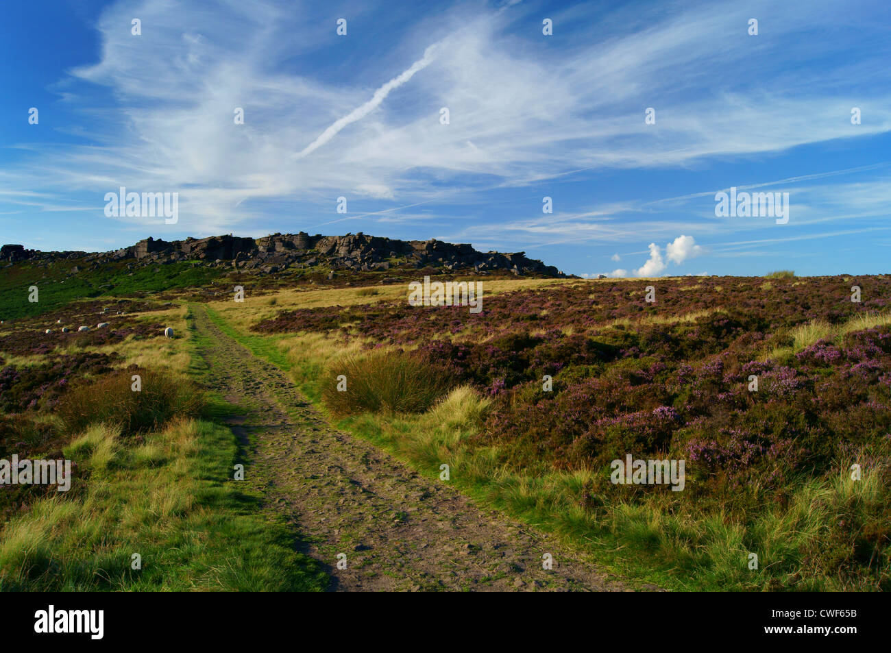 UK,Derbyshire,Peak District,Footpath to Stanage Edge & Cowper Stone - Stock Image