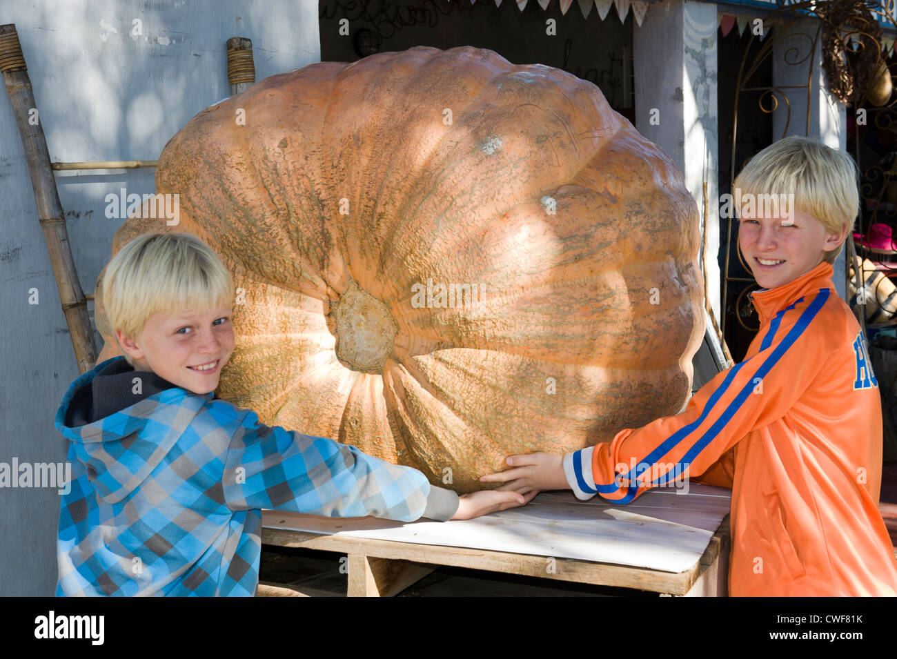 Children admire a giant pumpkin at a farmstall in Worcester, Western Cape, South Africa - Stock Image