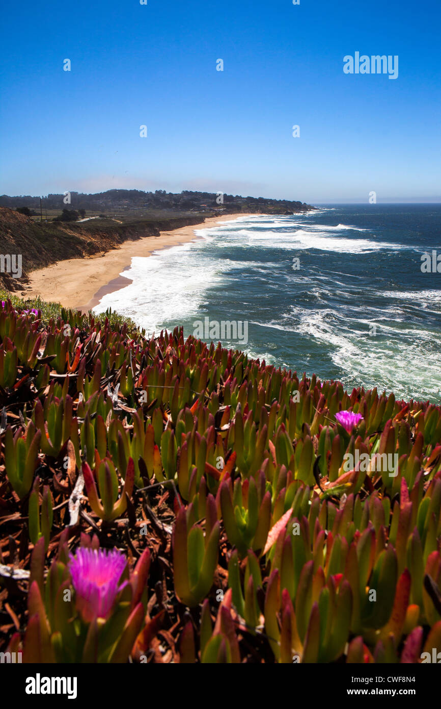 Californian Coast, USA - Stock Image