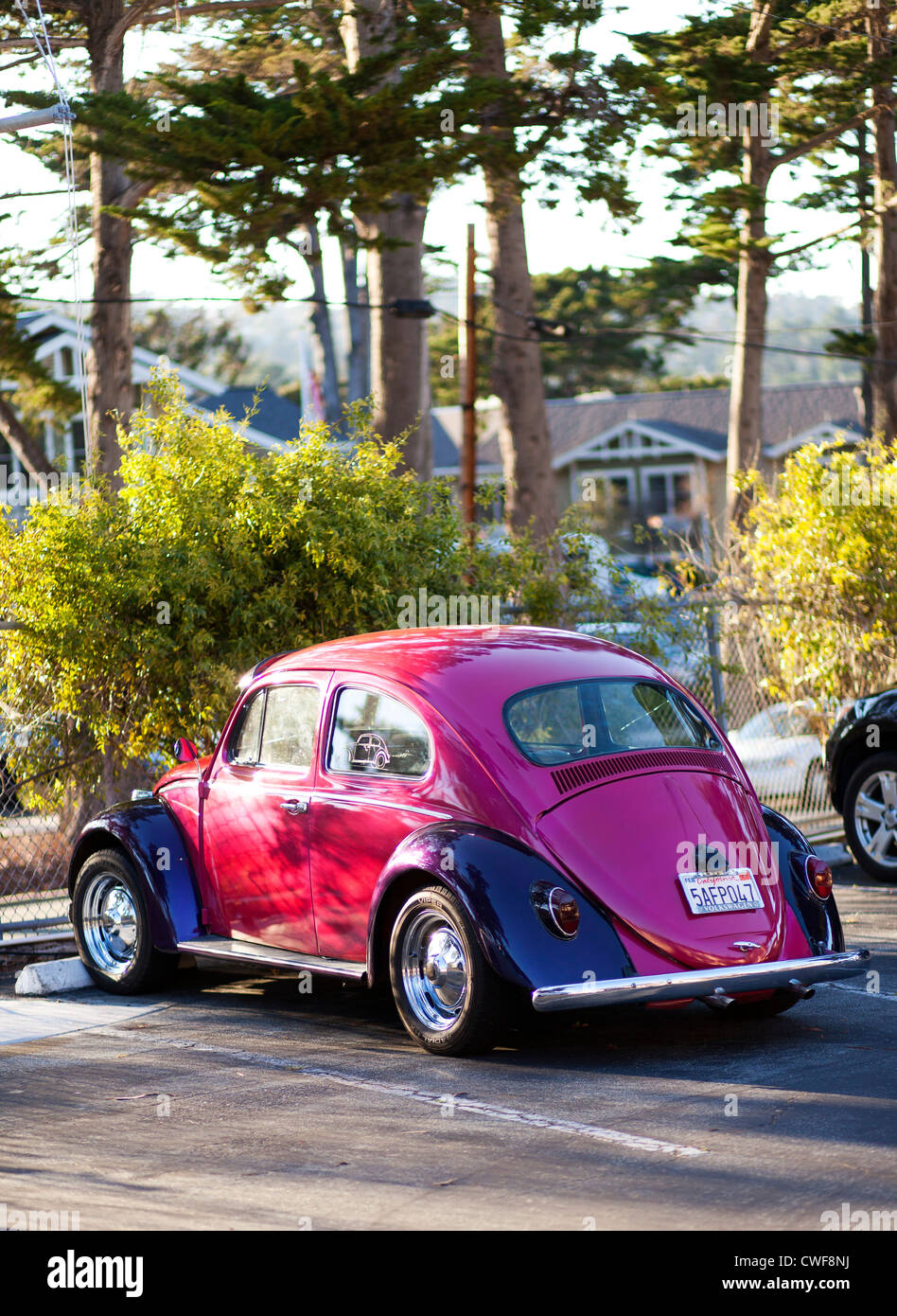 VW Beetle, California - Stock Image