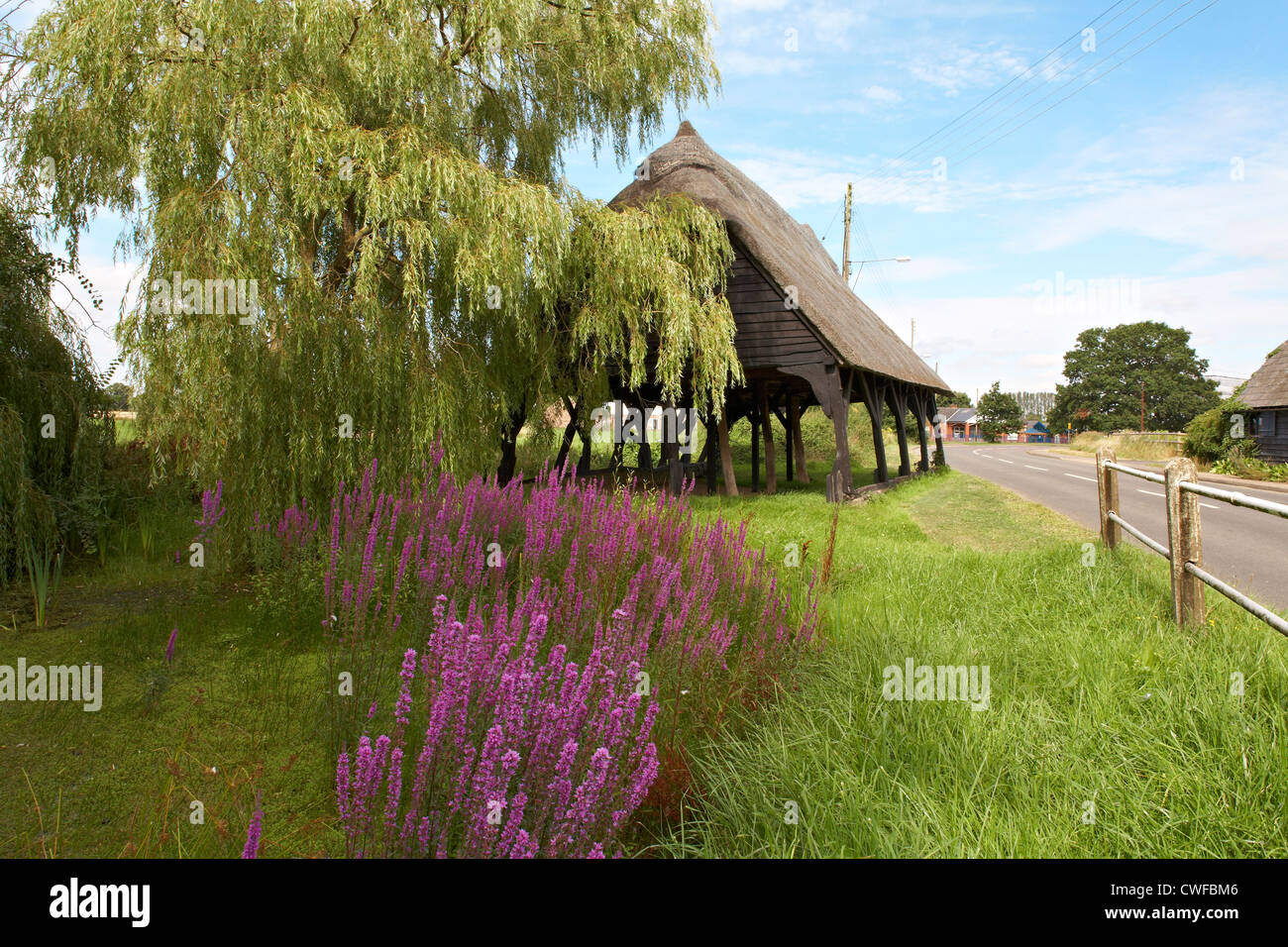 Great Britain England Essex Copford Cart Lodge Farm Building Wild Flowers - Stock Image