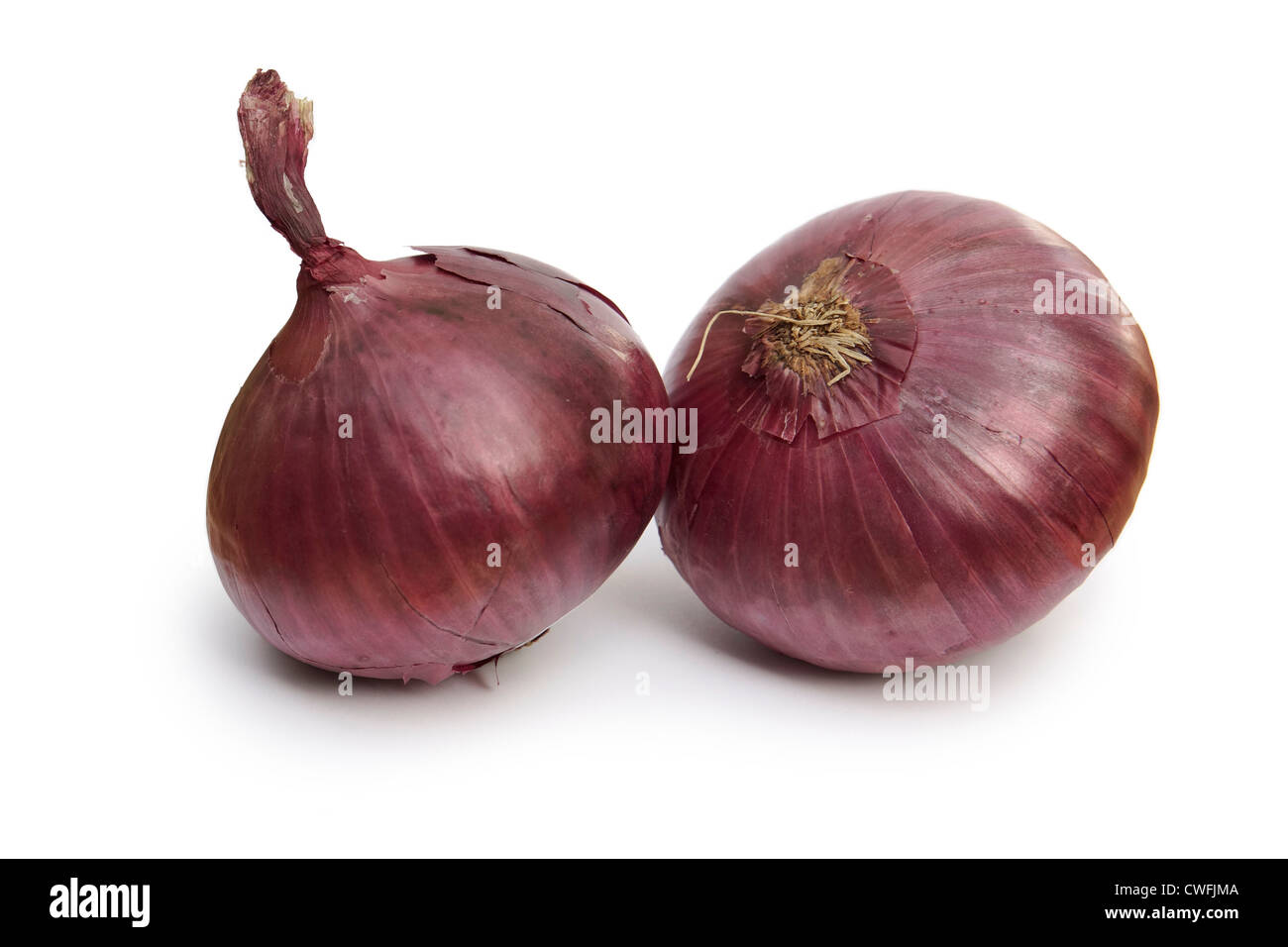 Onion, Red Onions - Stock Image