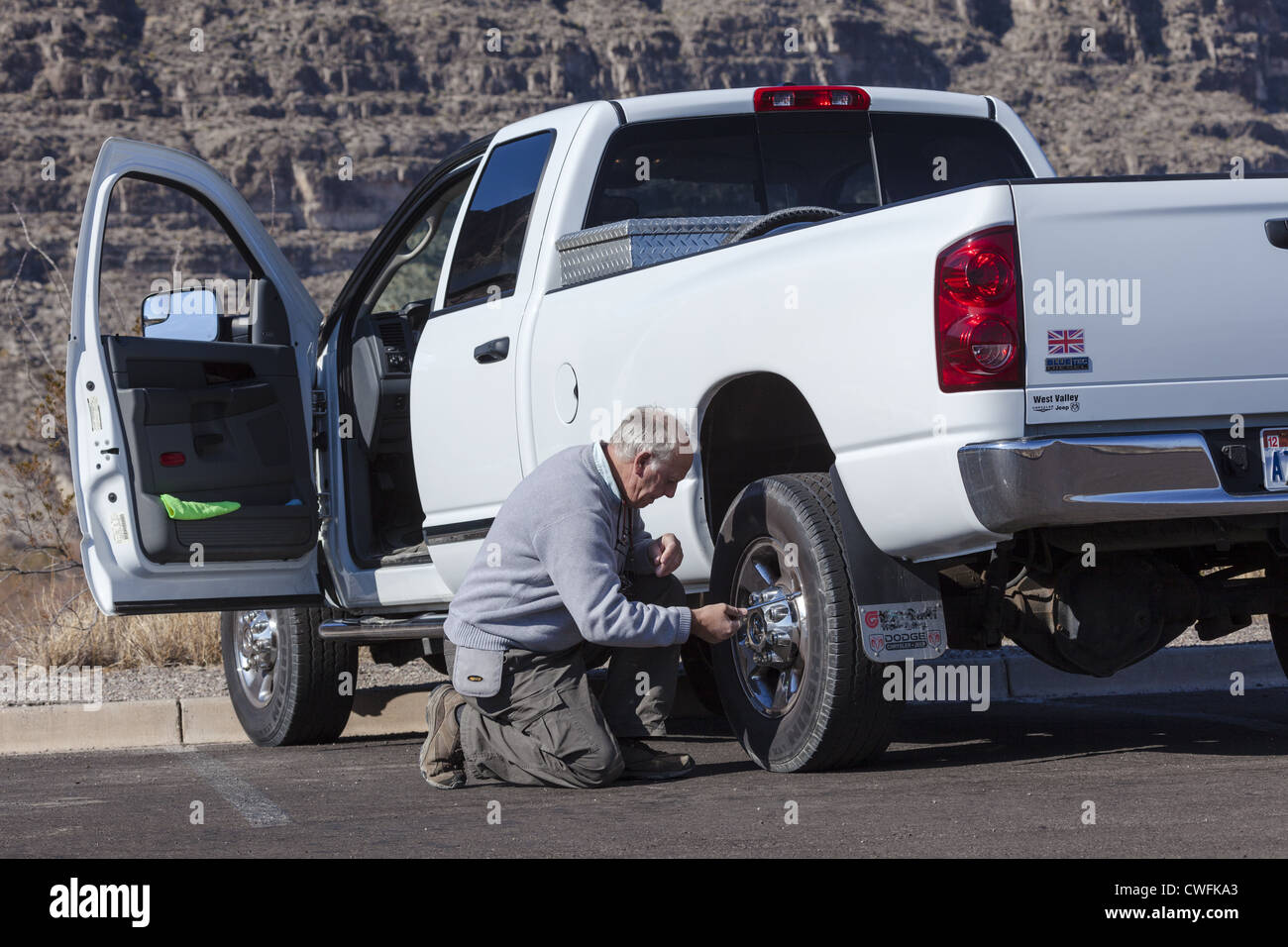 Senior man kneeling beside a white pick-up truck checking pressure of the rear tyre using a pressure gauge - Stock Image