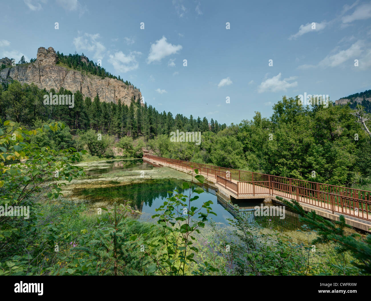 Black Hills in South Dakota in the Summer. - Stock Image