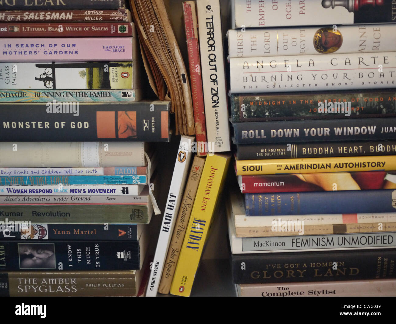 Stack Book Books Bookshelf Shelf Shelve