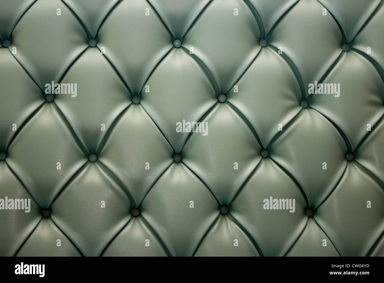 Leather upholstery - Stock Image